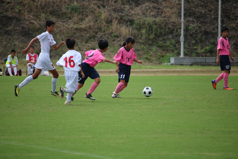サッカー (477)