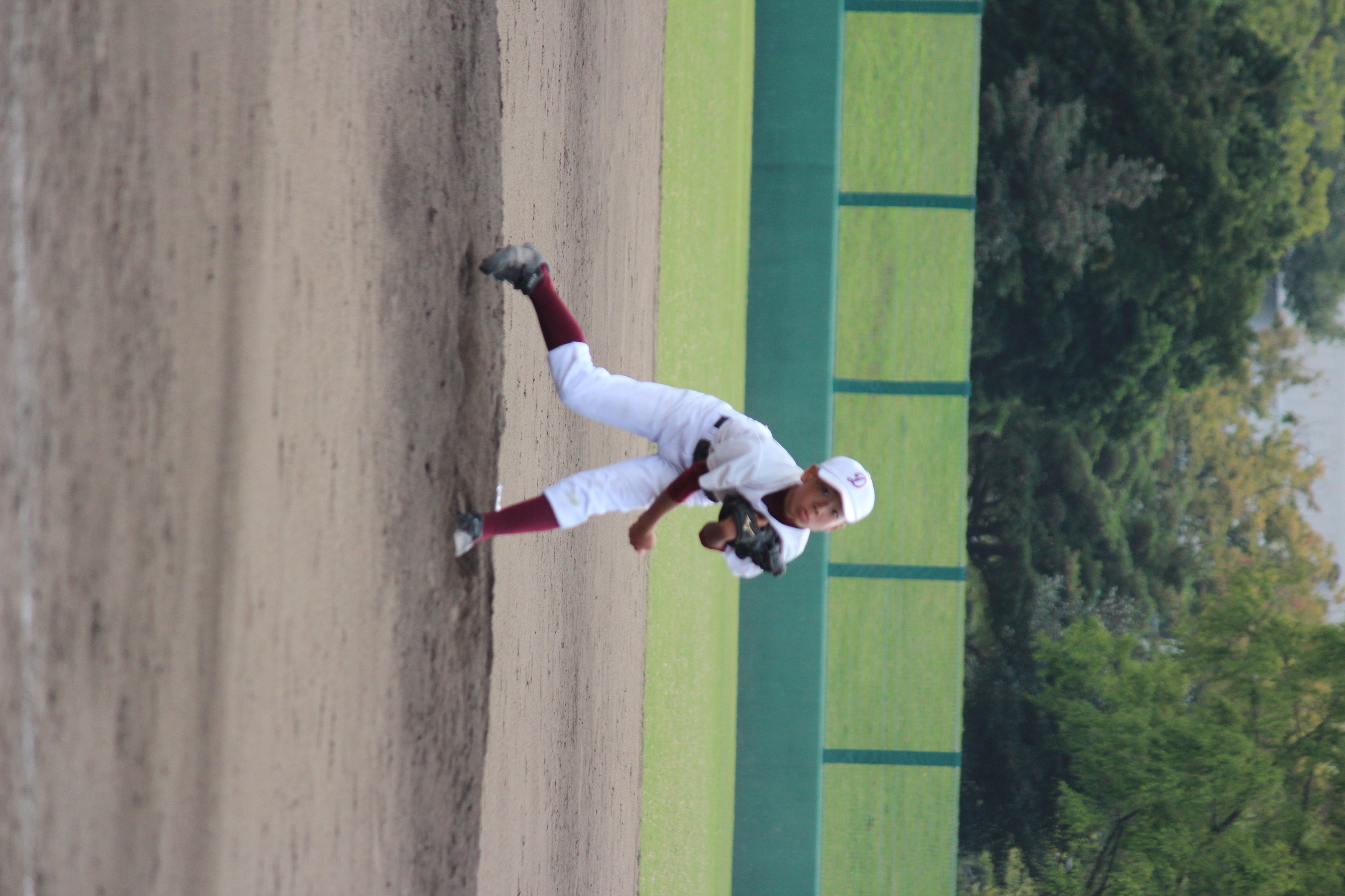 野球 (886)