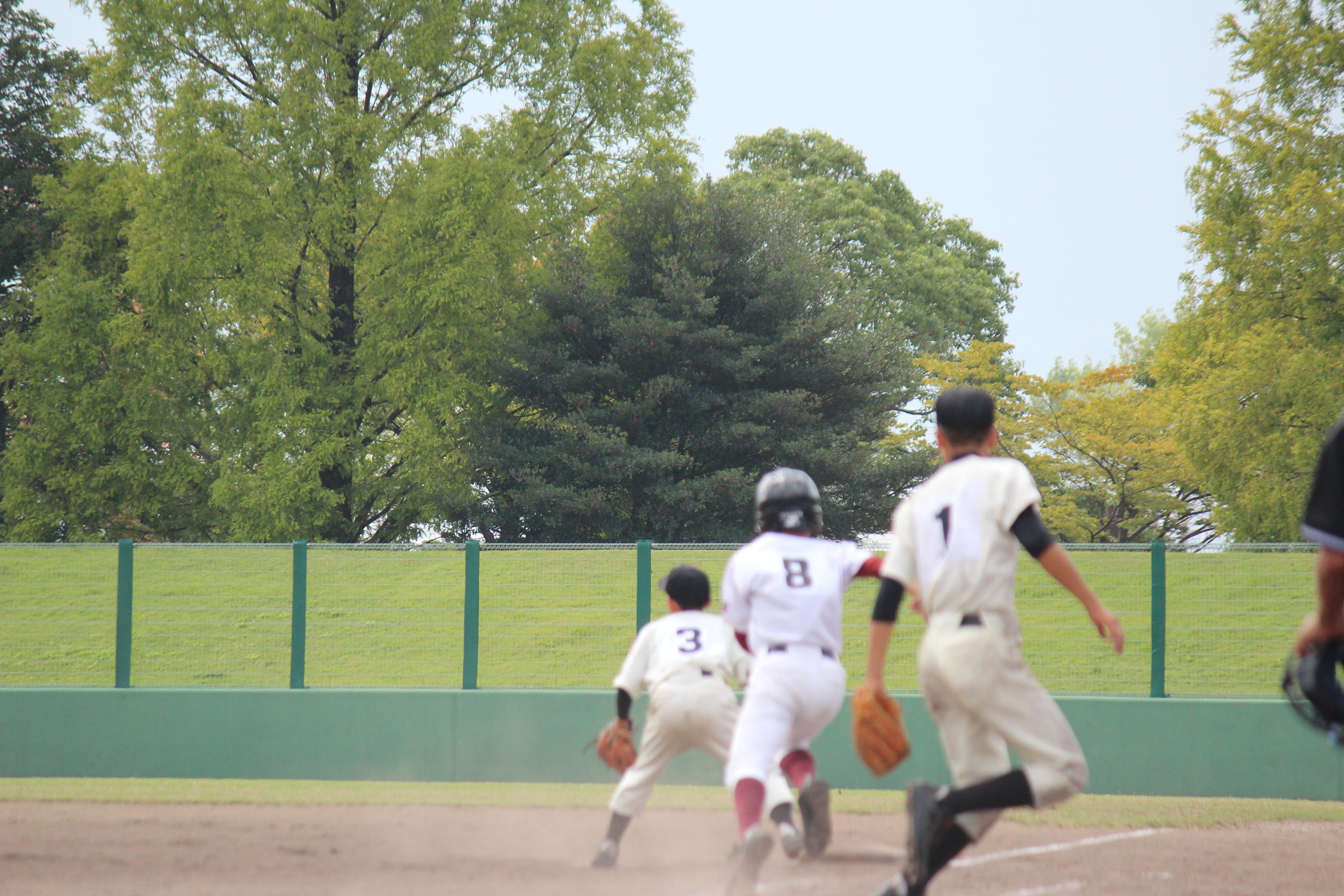 野球 (902)