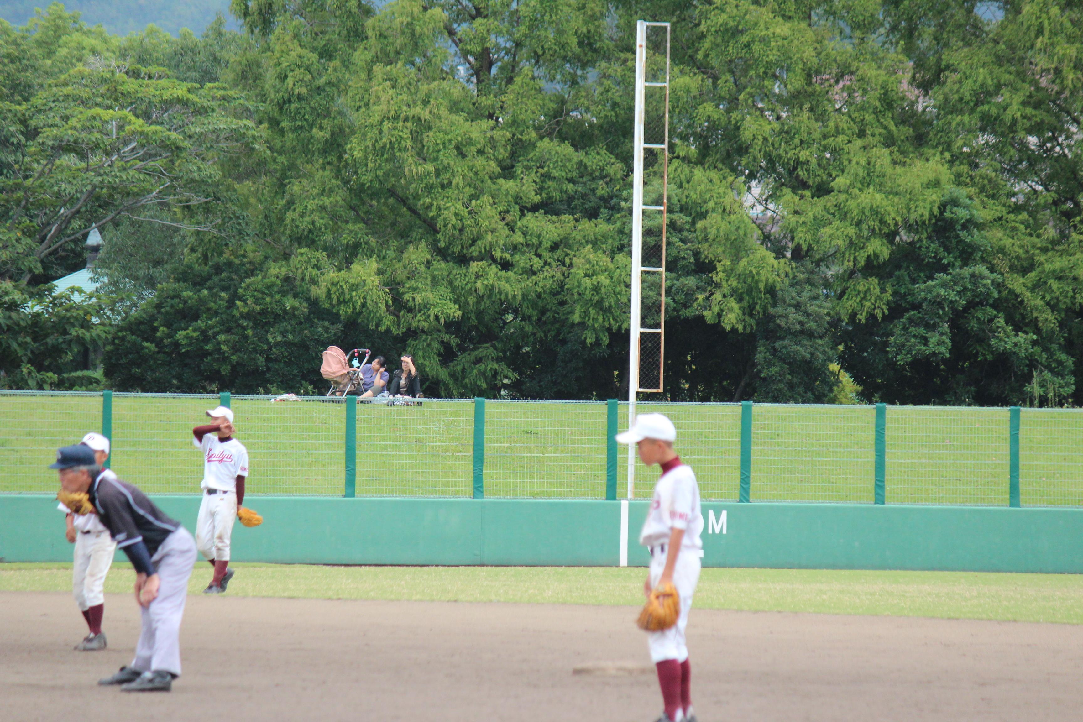 野球 (325)