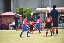mini_soccer (173)