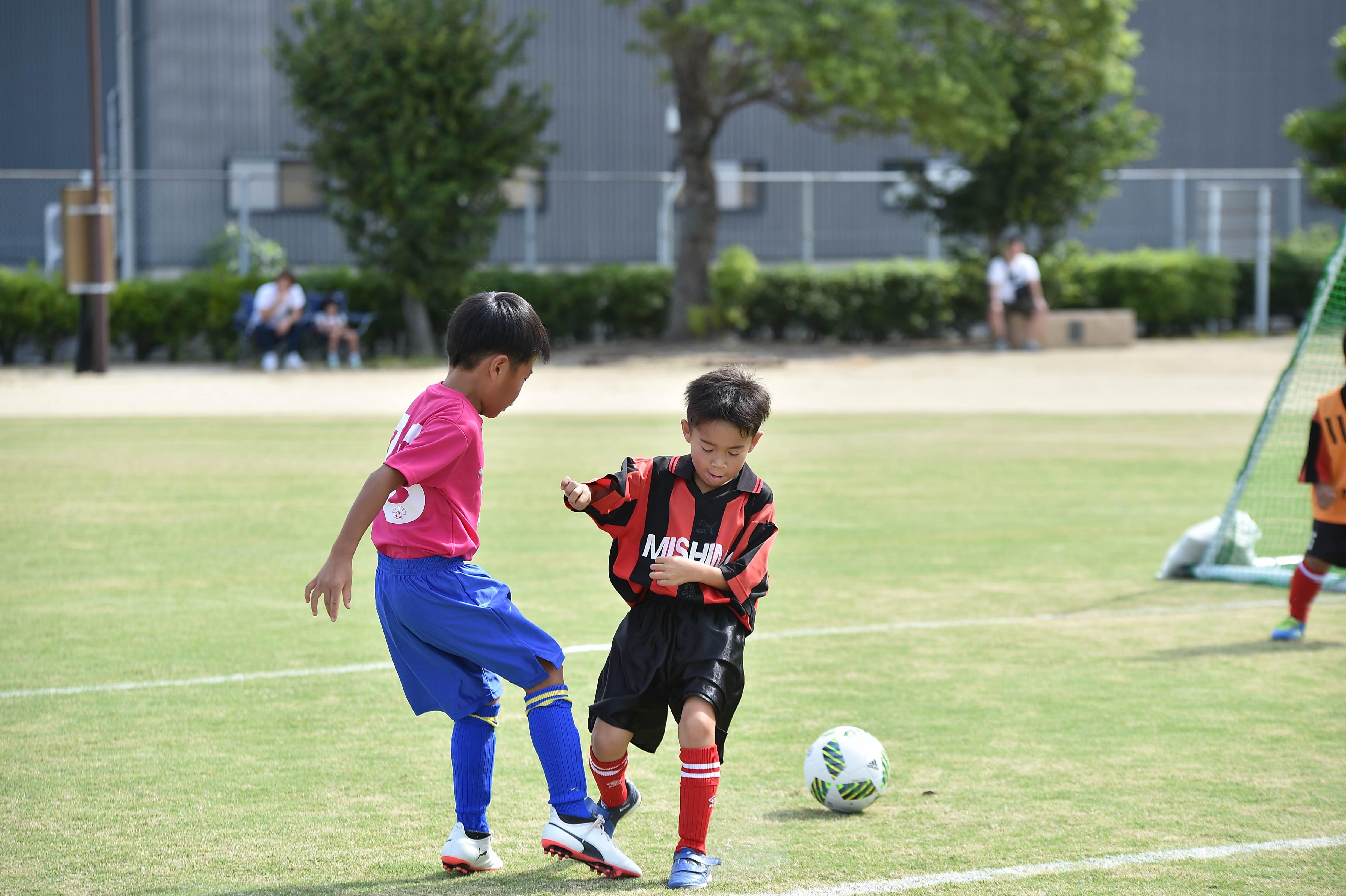 mini_soccer (151)