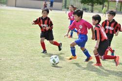 mini_soccer (159)