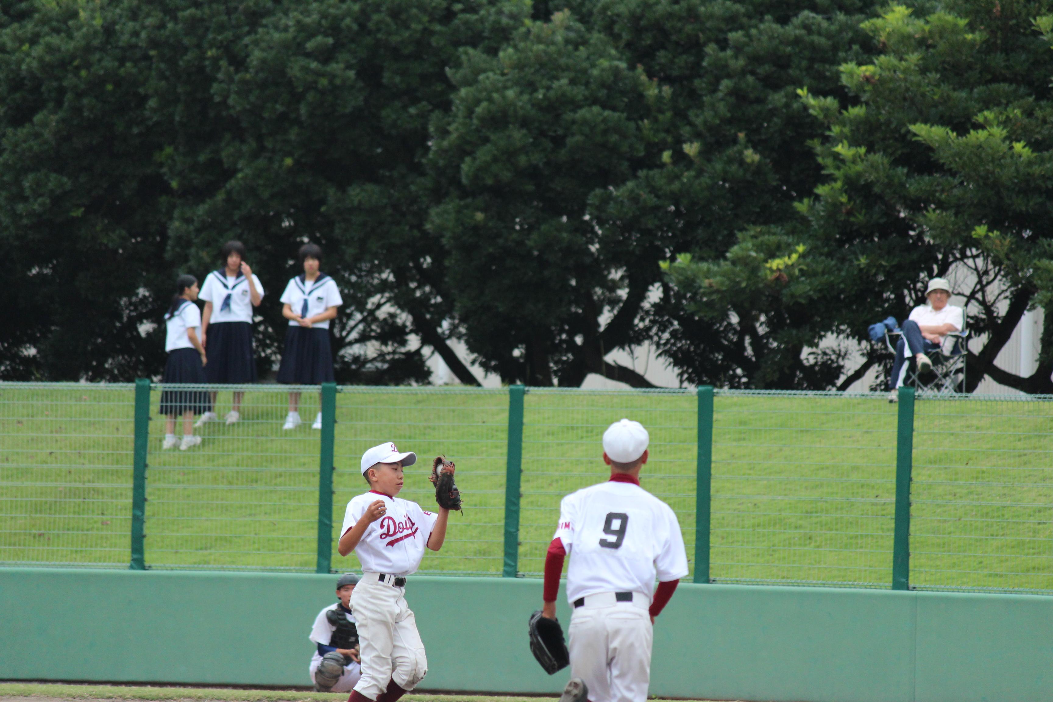 野球 (229)