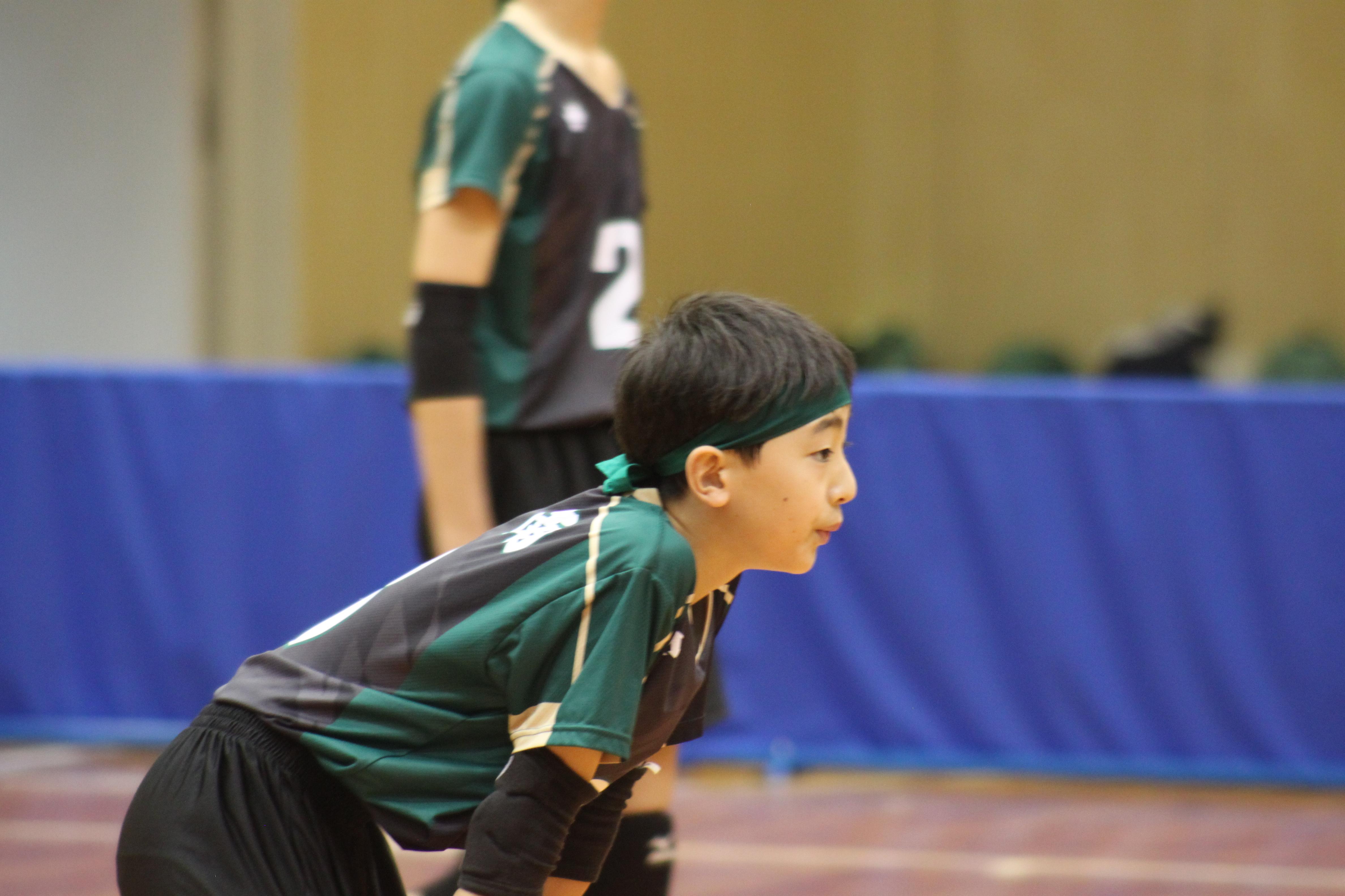 バレーボール (14)