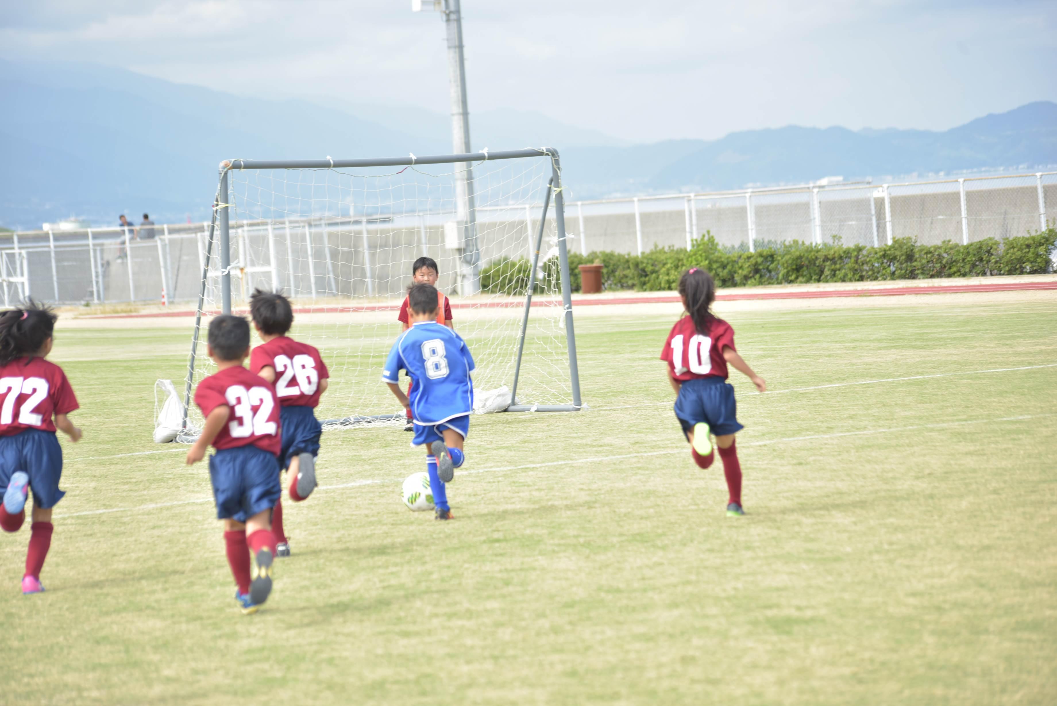mini_soccer (561)