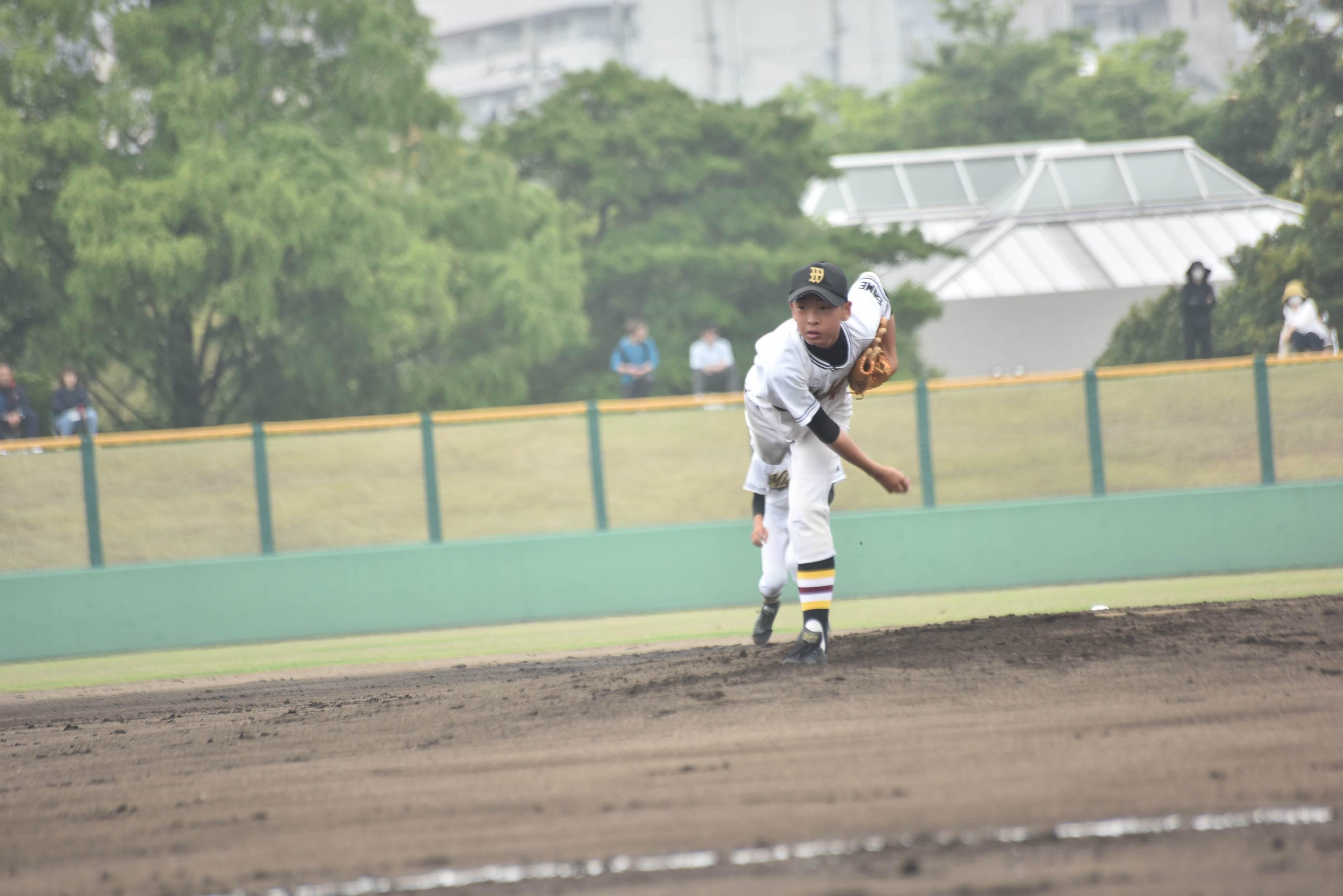 野球 (84)