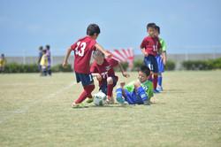 mini_soccer (456)