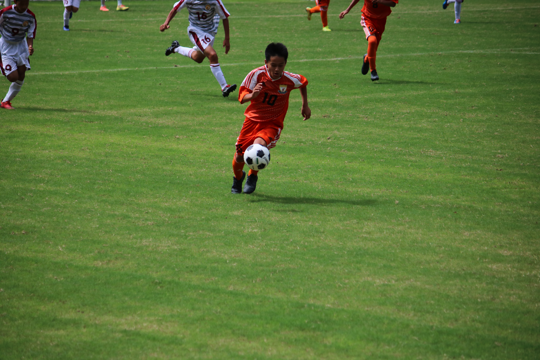 サッカー (444)