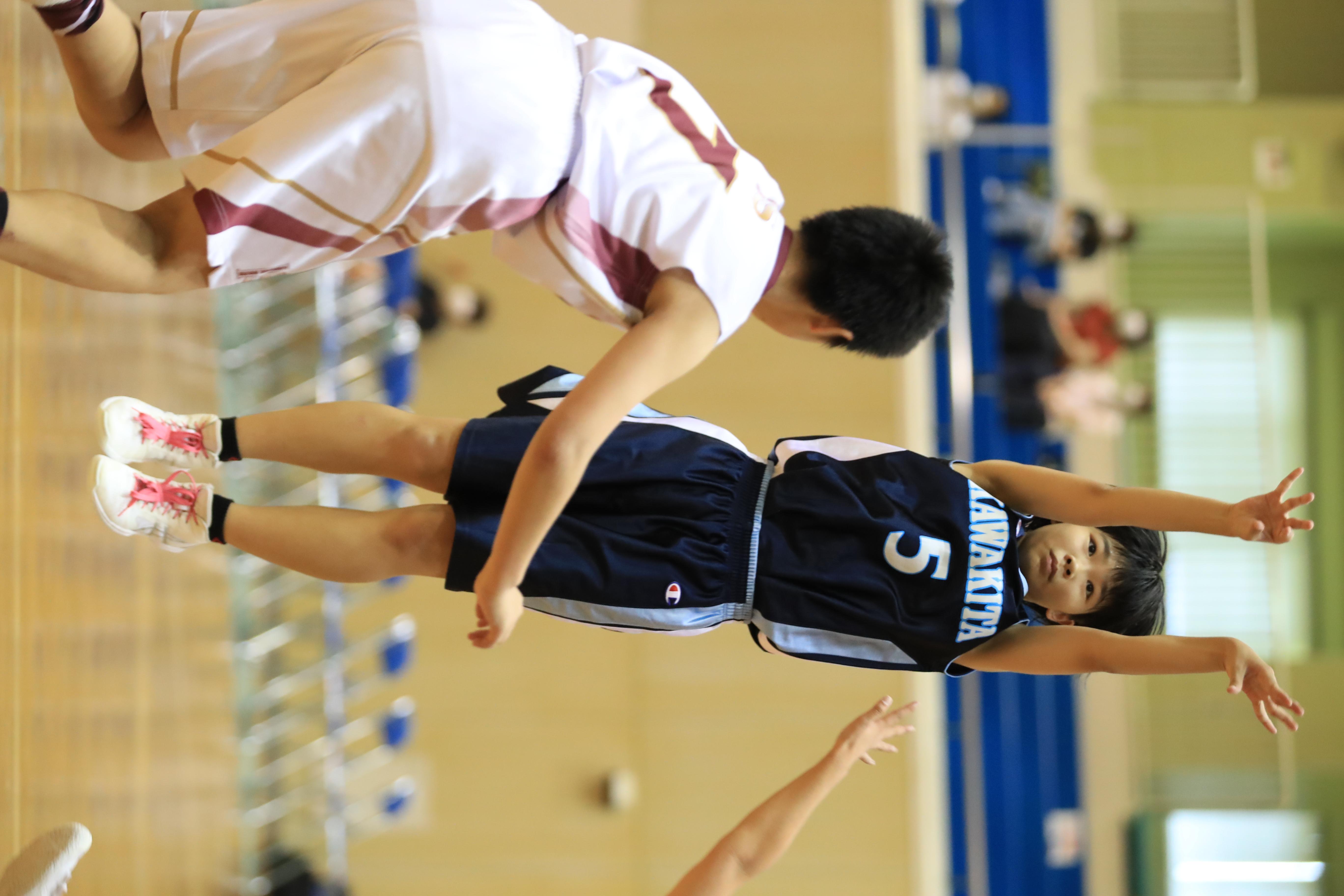 バスケット (105)