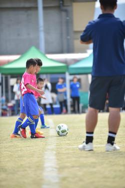 mini_soccer (206)