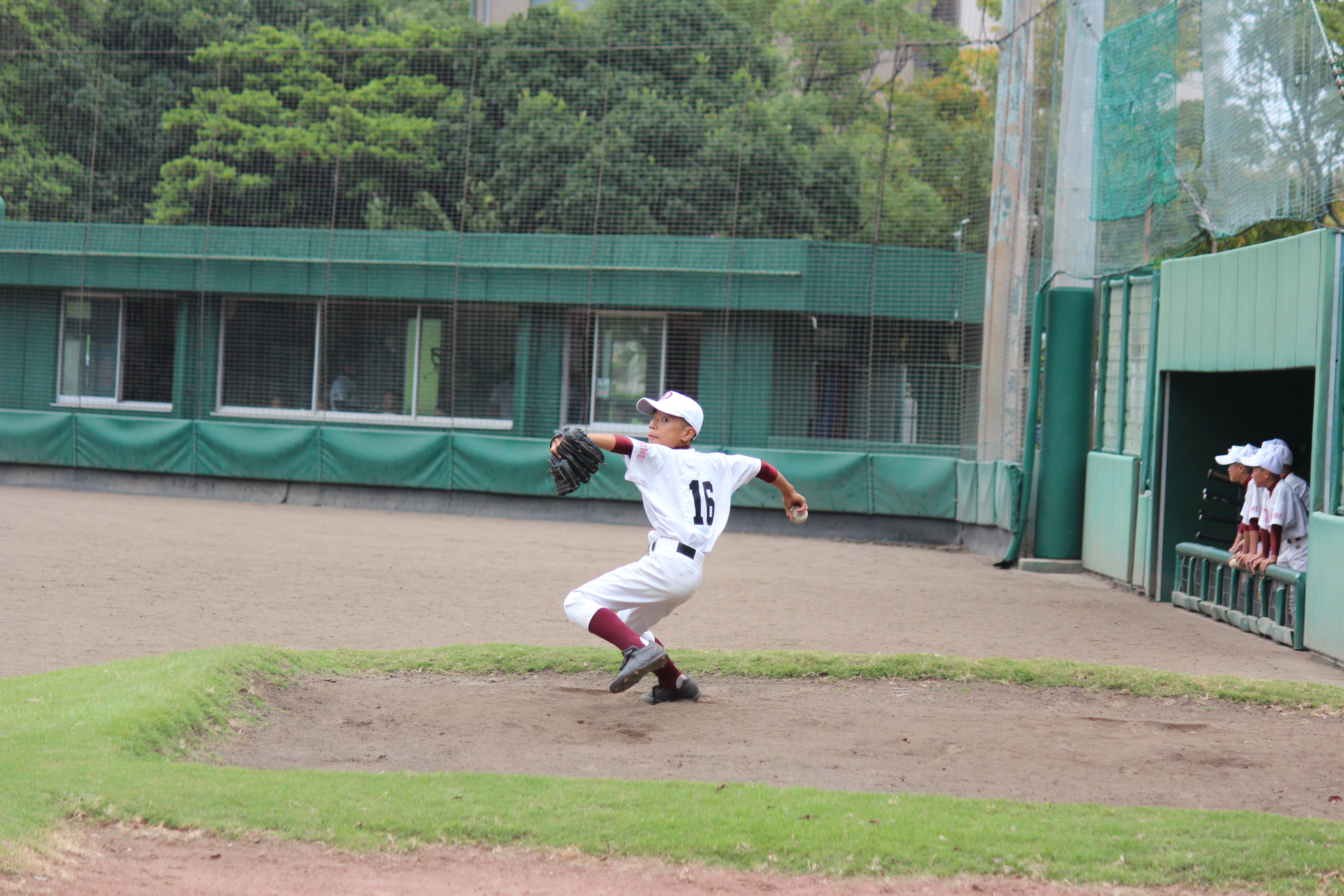 野球 (216)