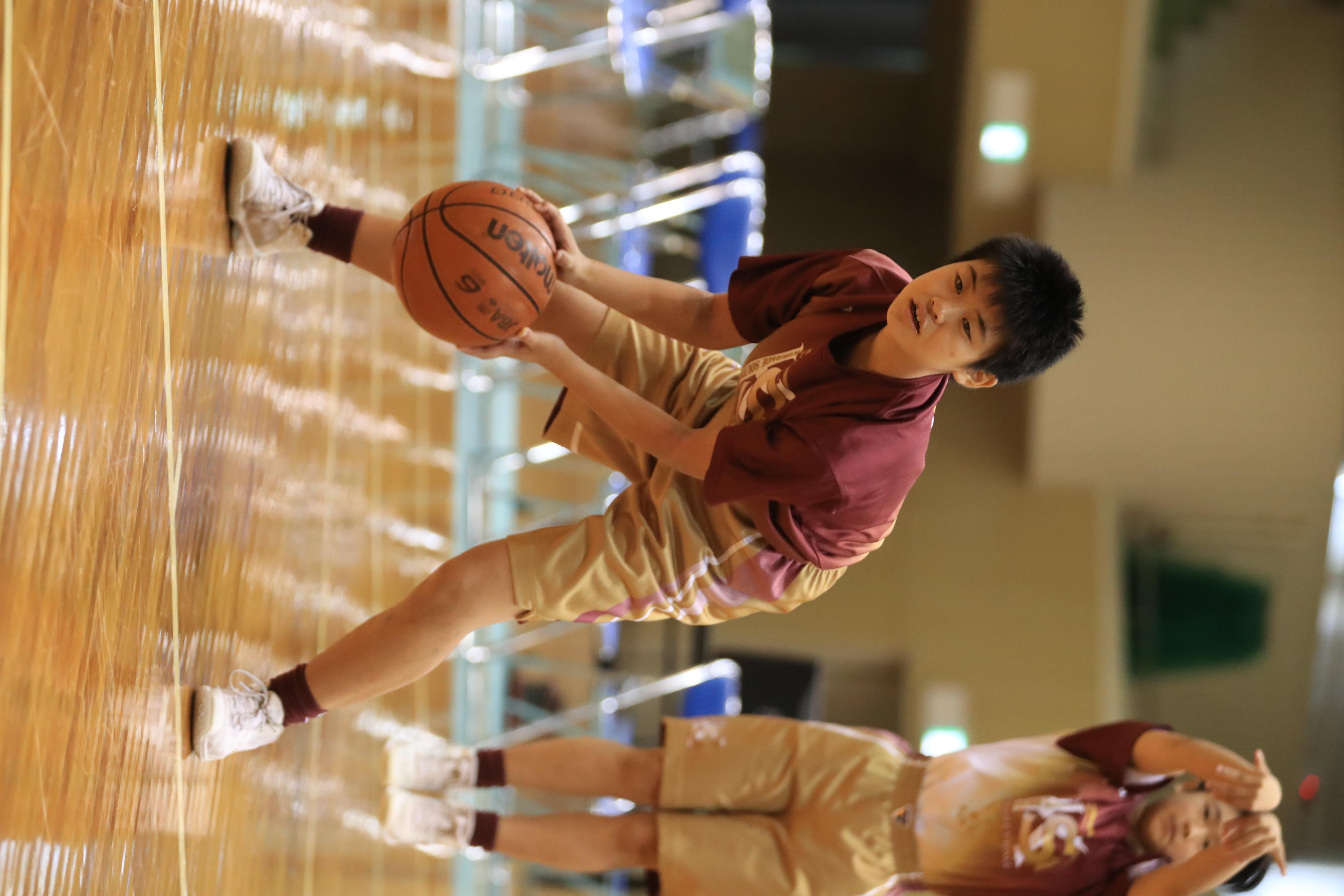 バスケット (517)