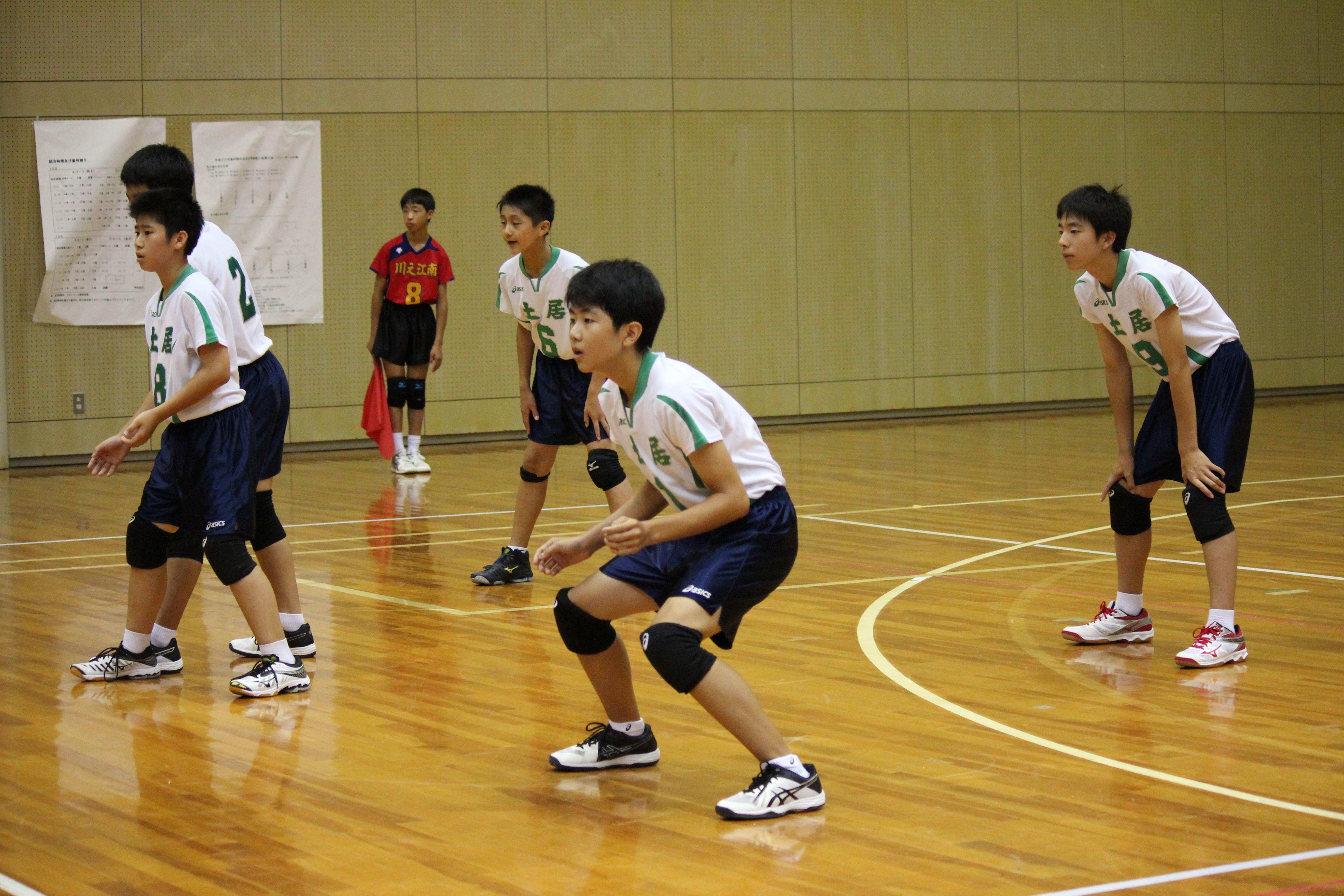 バレーボール (447)
