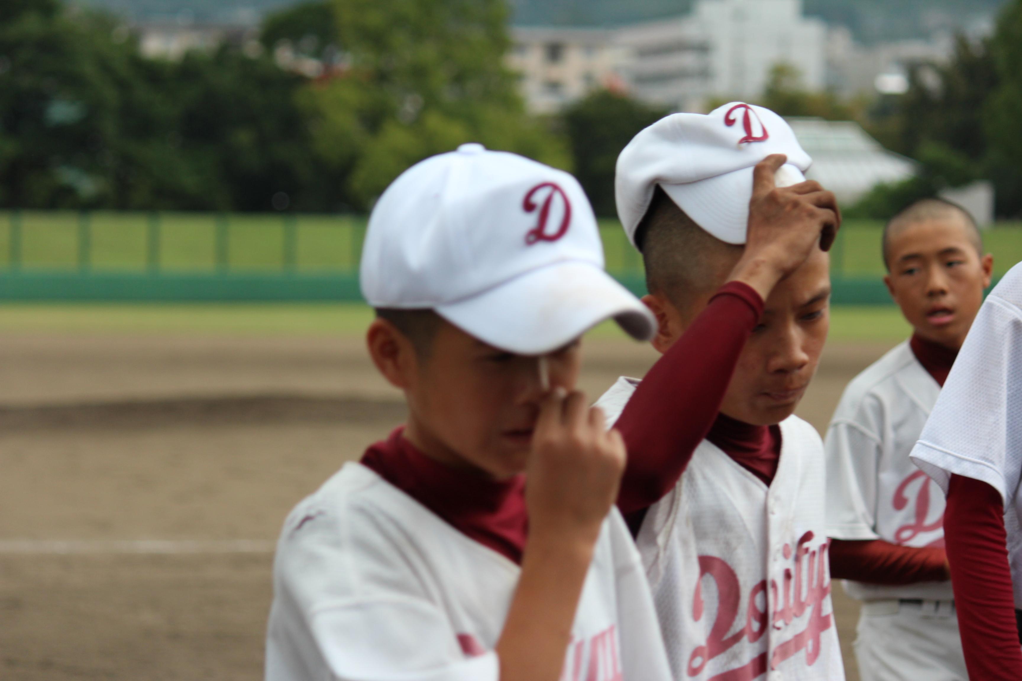 野球 (955)
