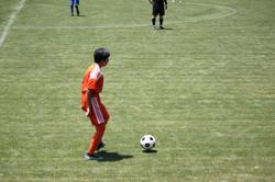 サッカー (796)