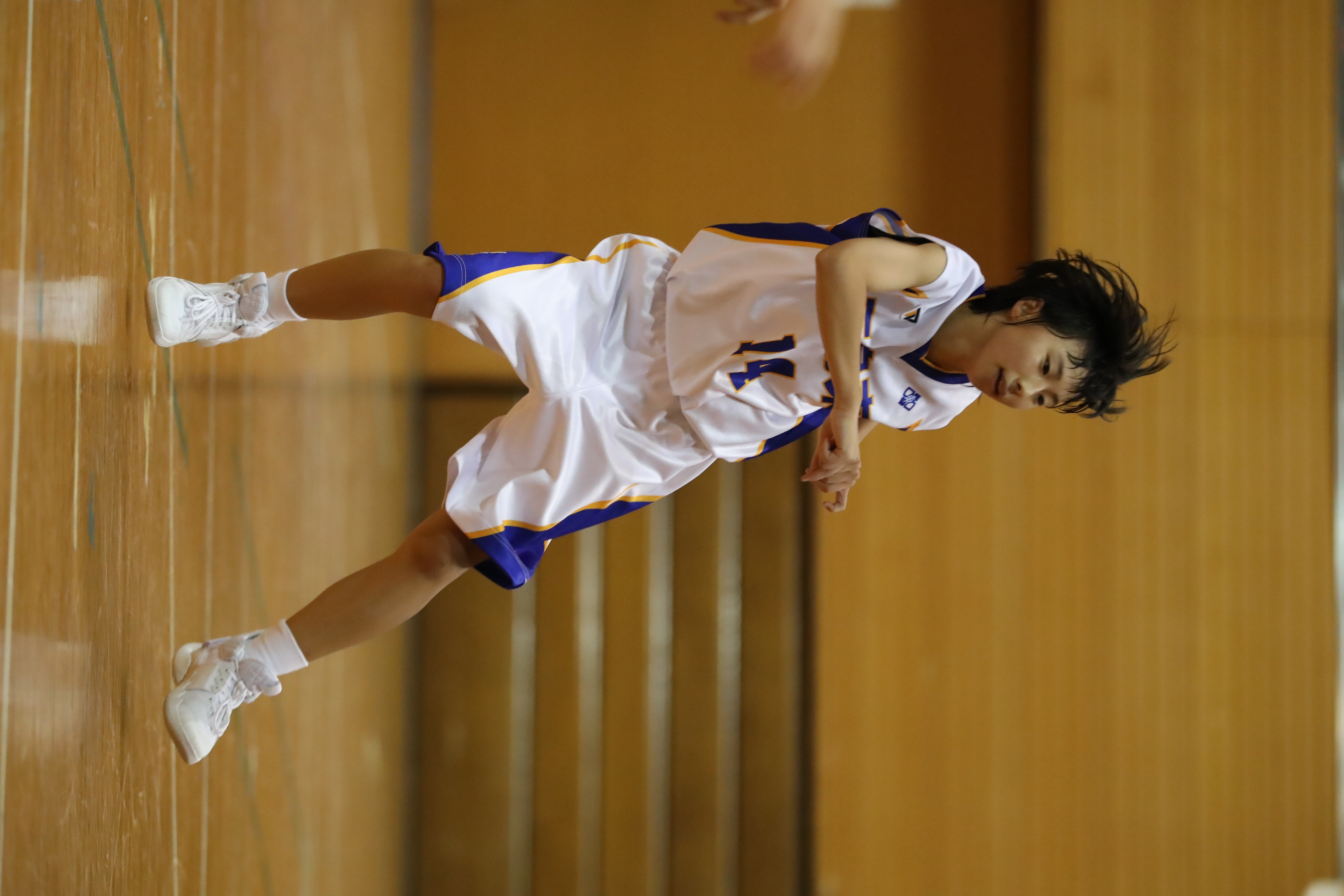 バスケット (257)