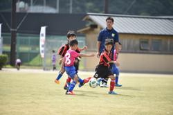 mini_soccer (179)