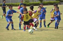 mini_soccer (617)
