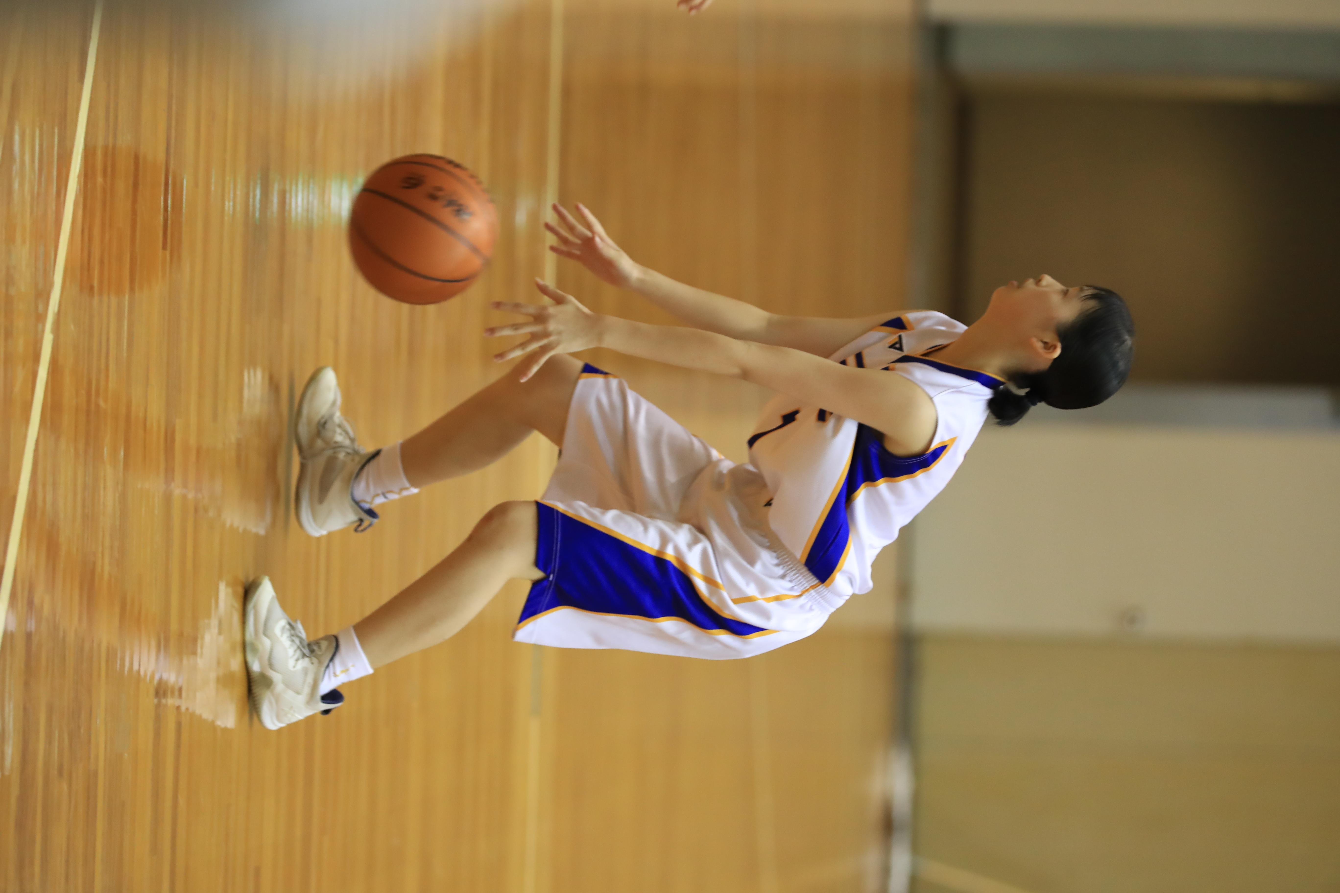 バスケット (801)