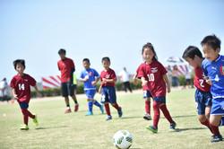 mini_soccer (521)