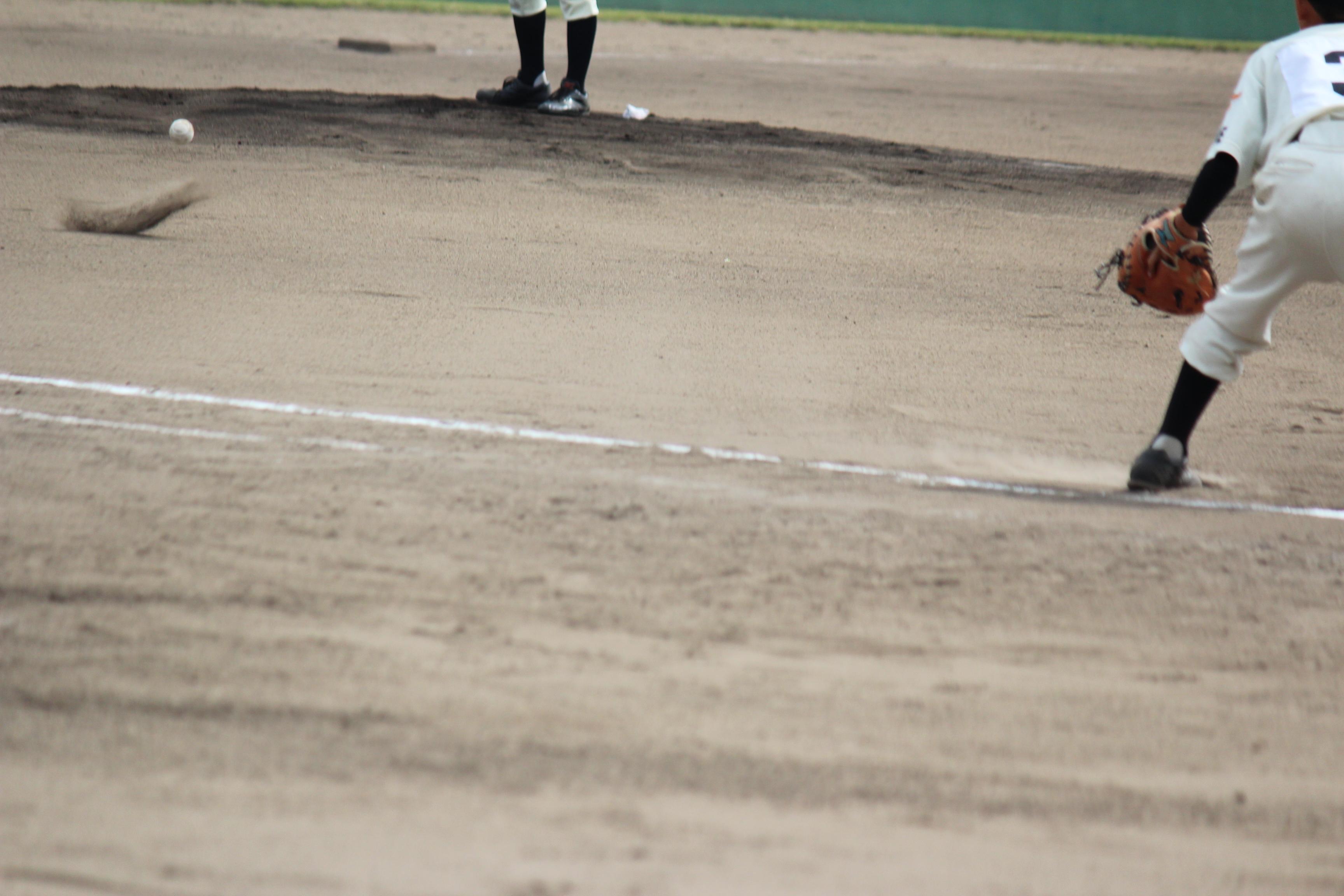 野球 (558)