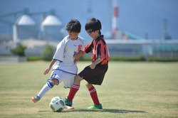 mini_soccer (383)
