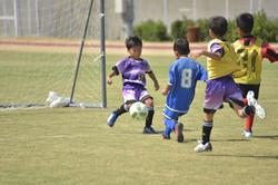 mini_soccer (627)