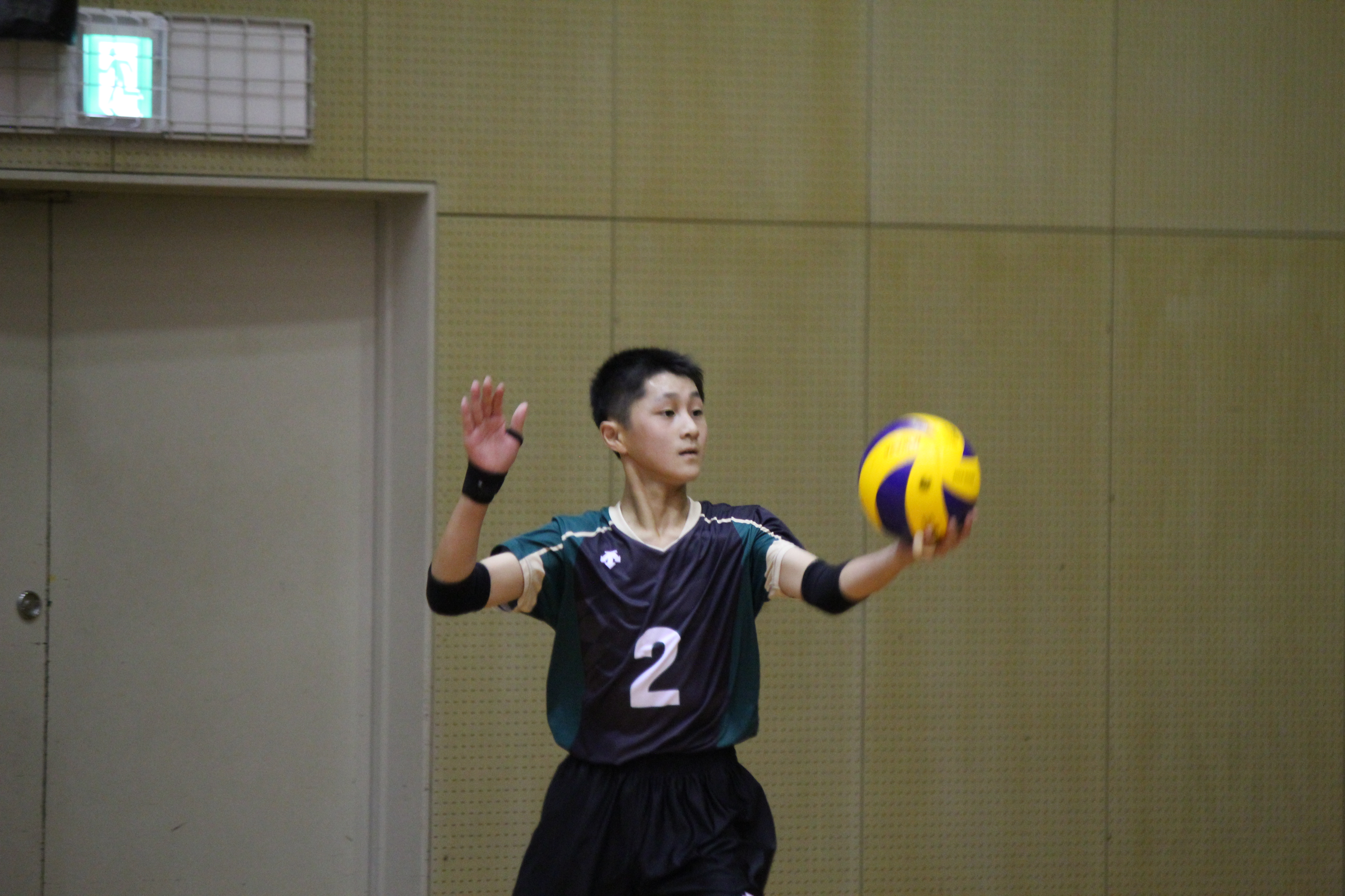 バレーボール (346)