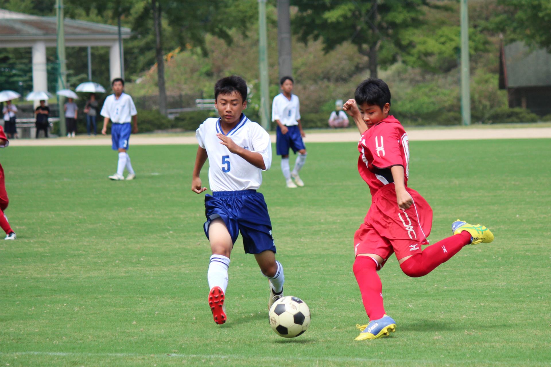 soccer (50)