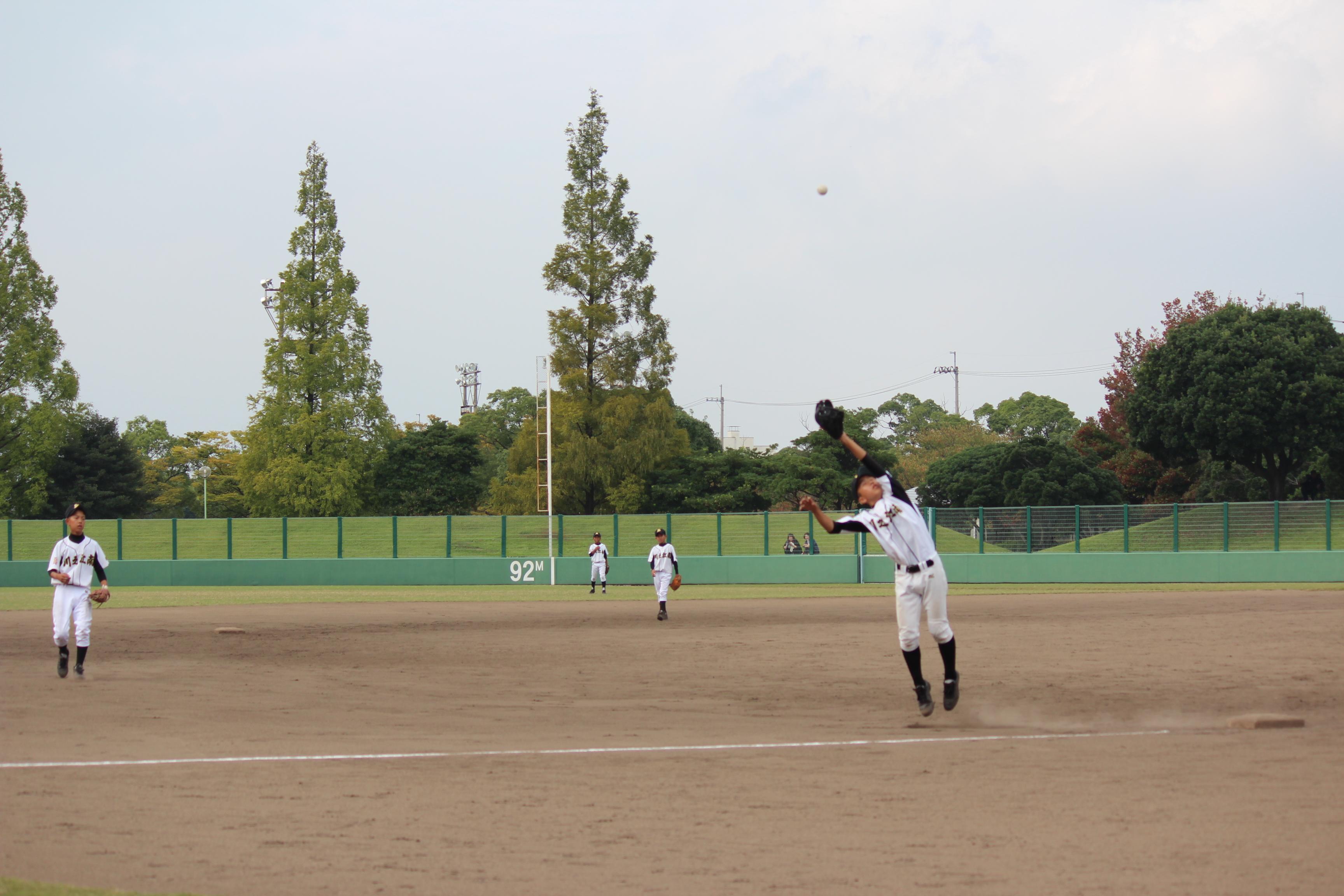 野球 (498)