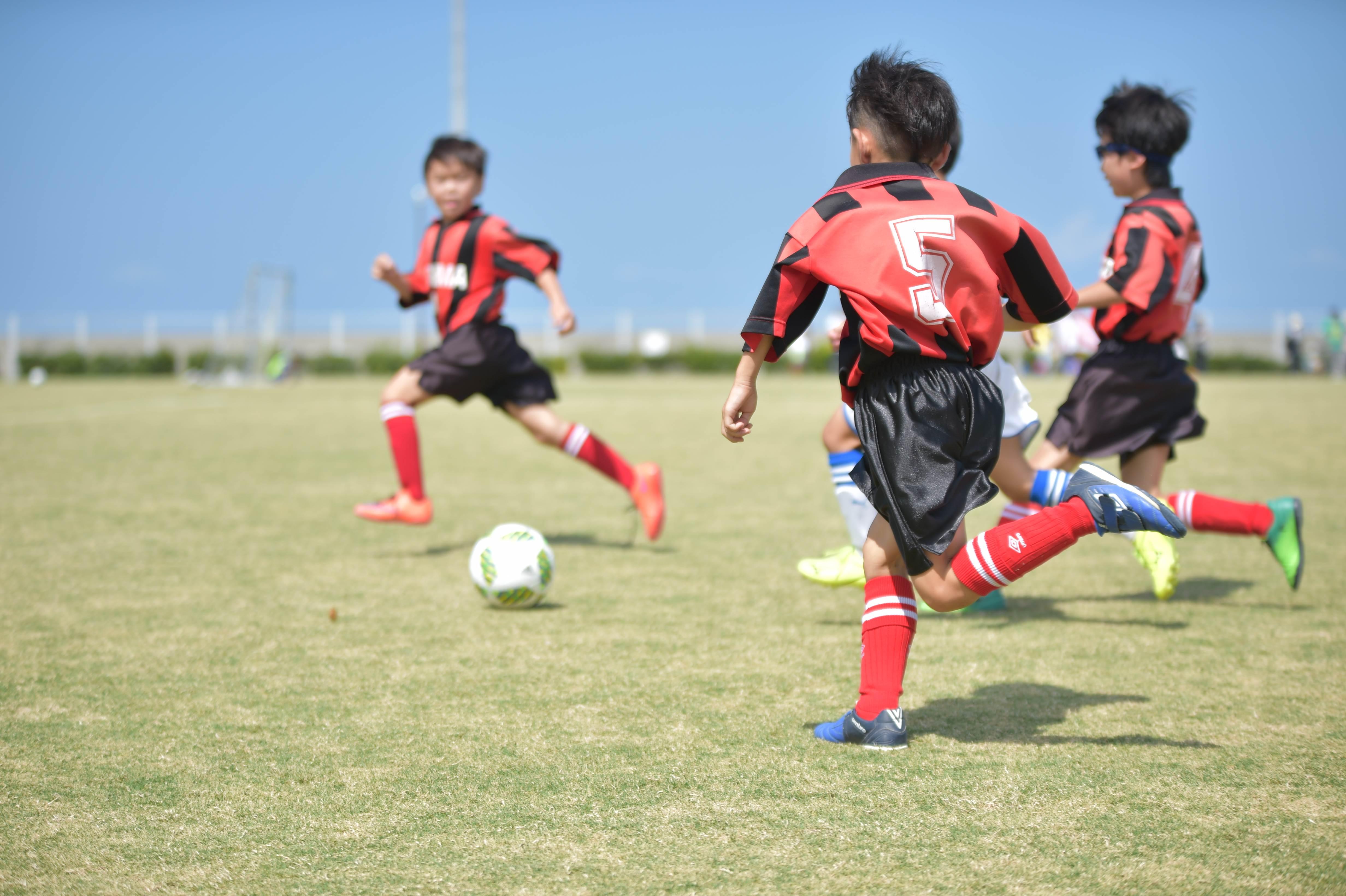 mini_soccer (328)