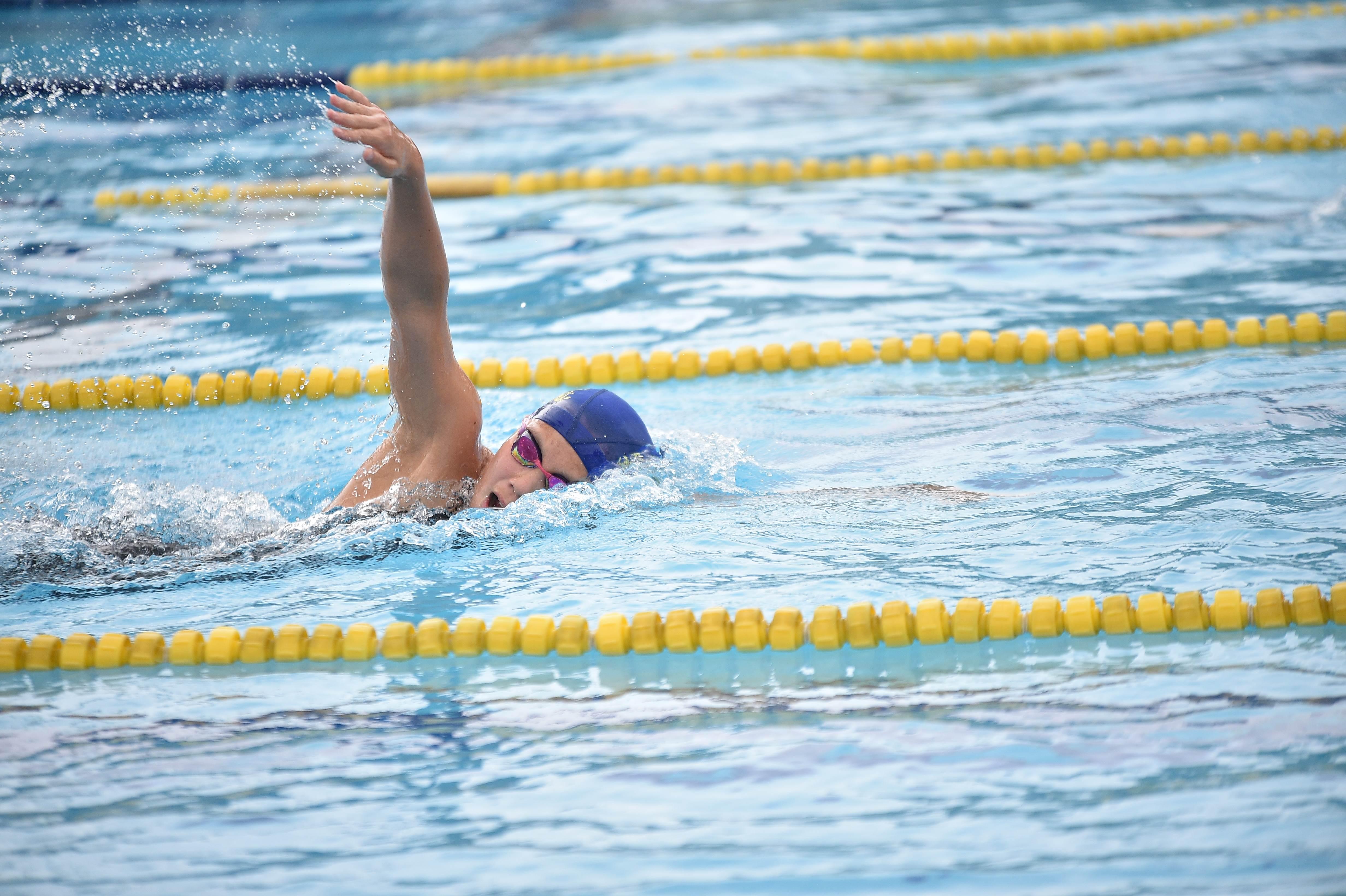 水泳 (95)