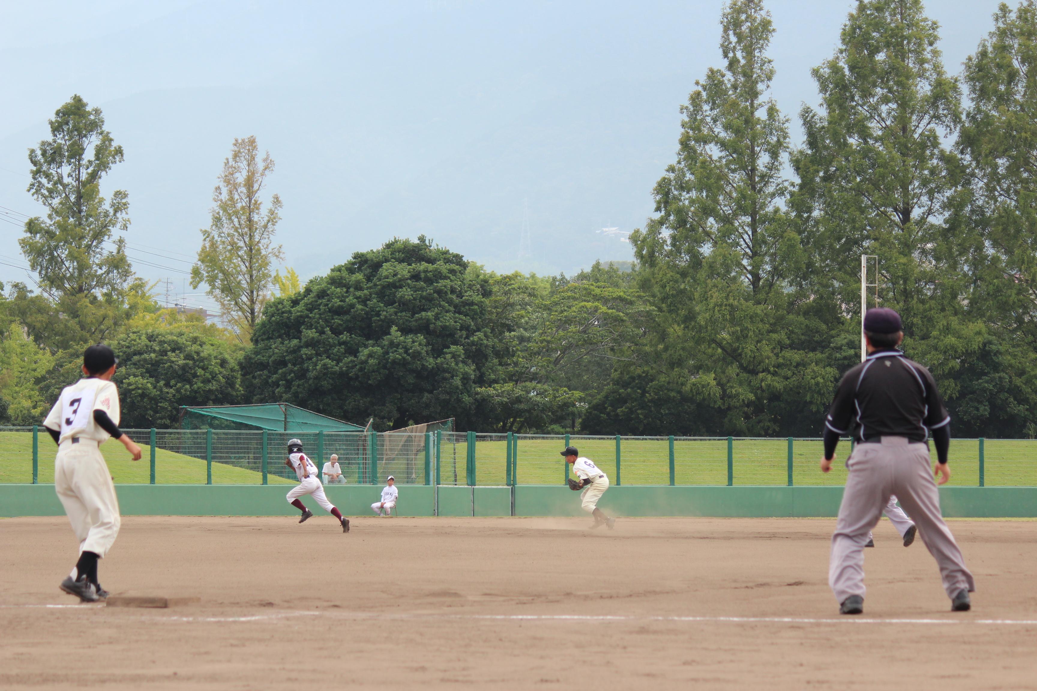 野球 (568)