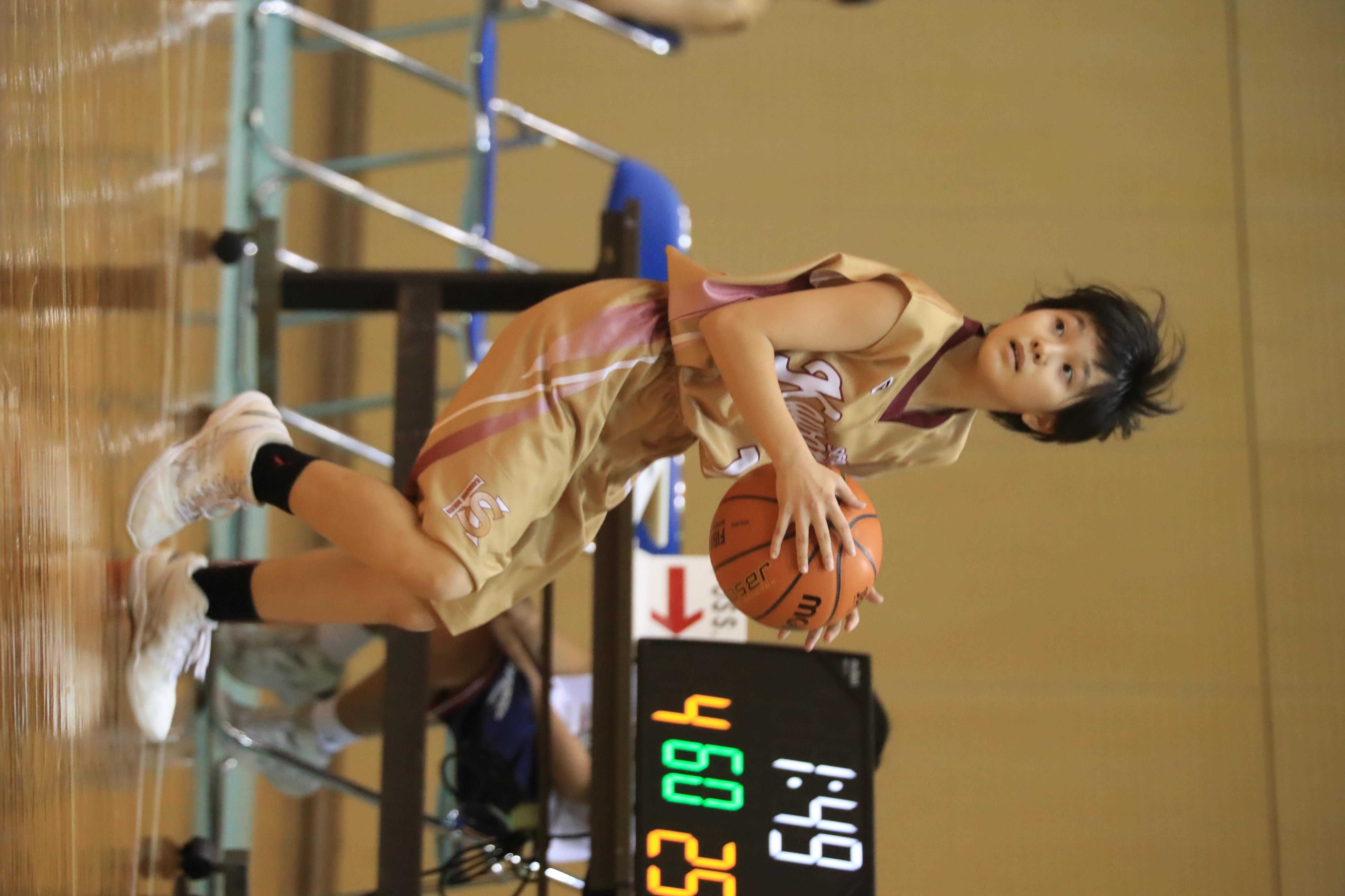 バスケット (360)