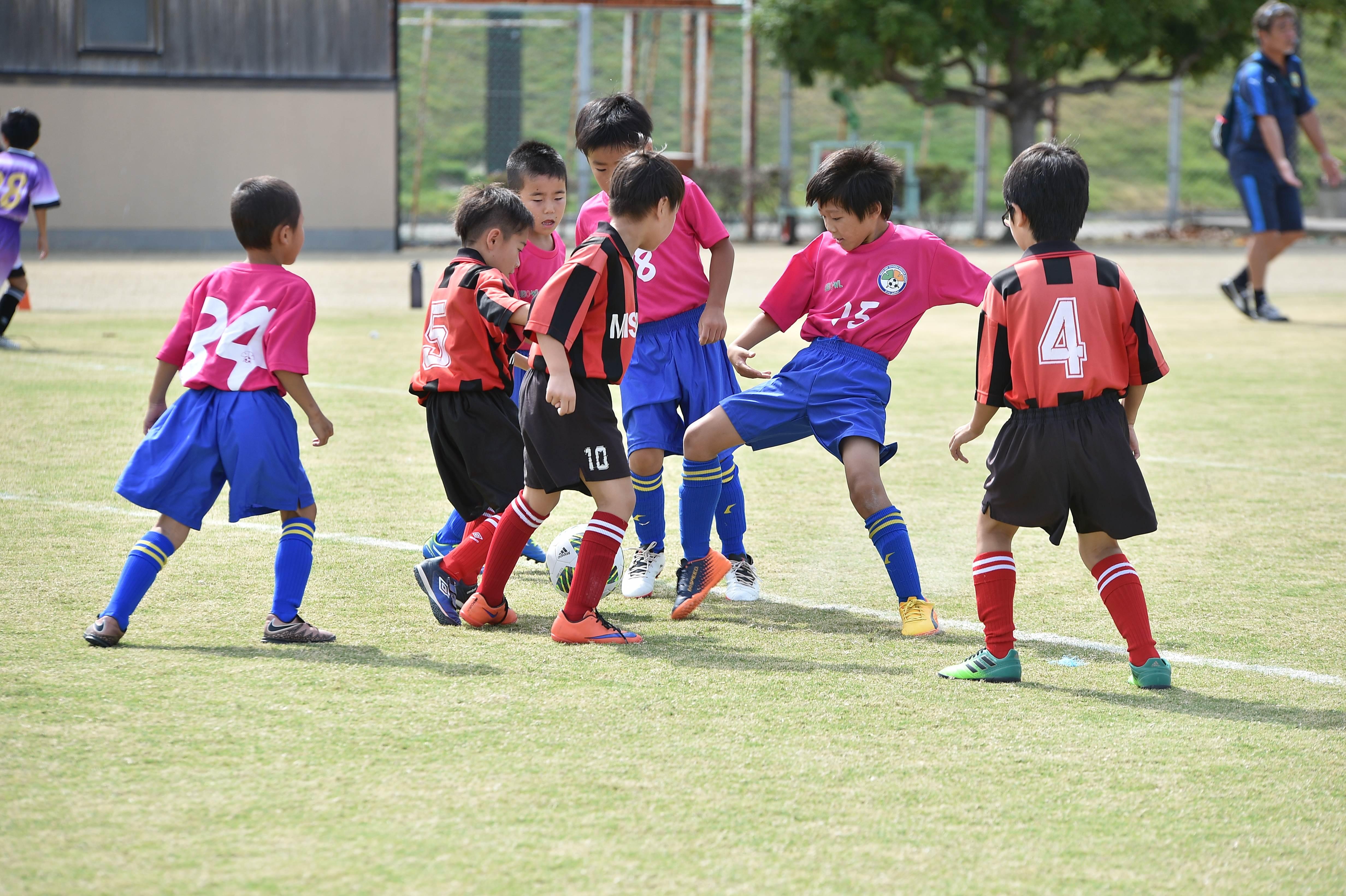 mini_soccer (148)