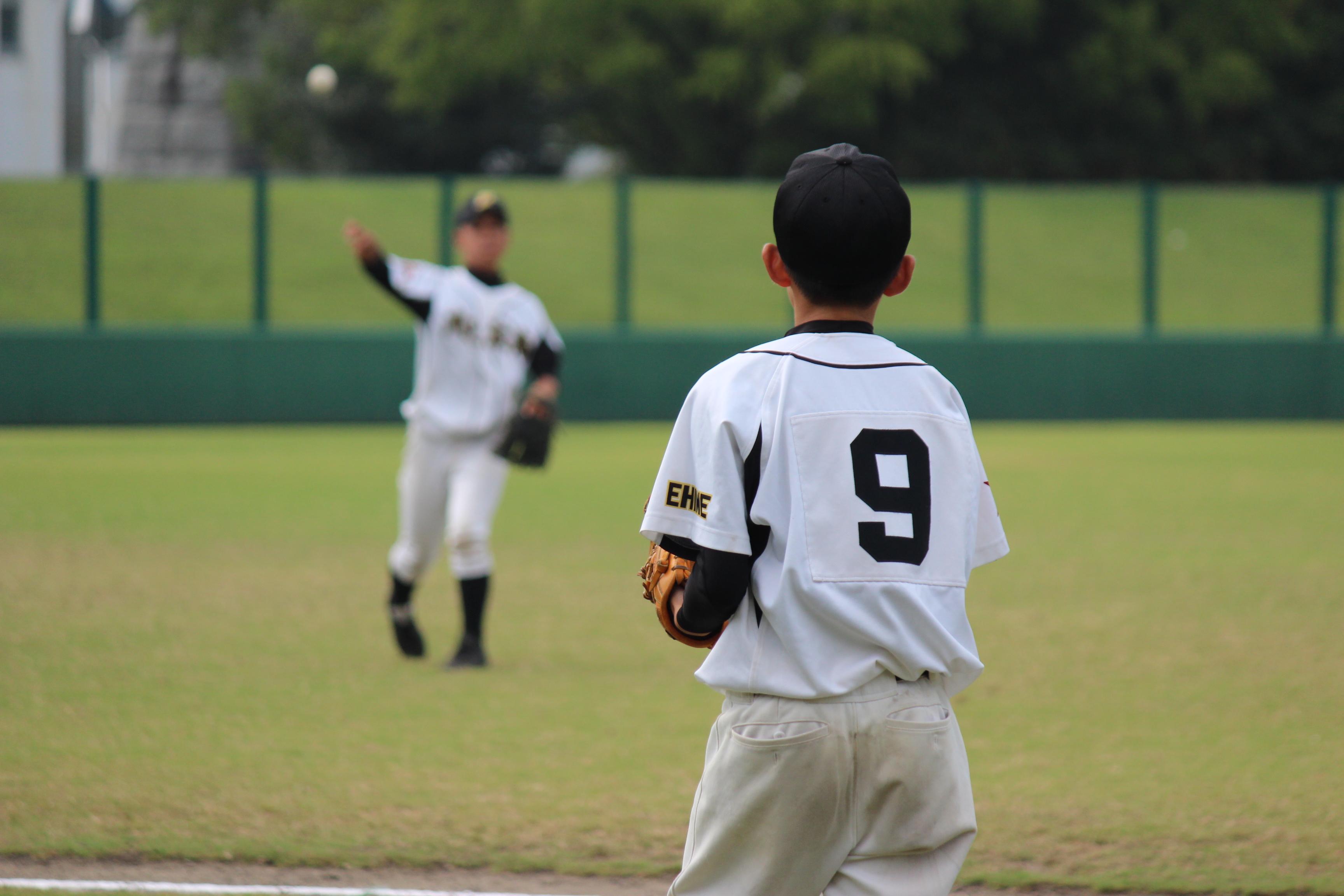 野球 (493)