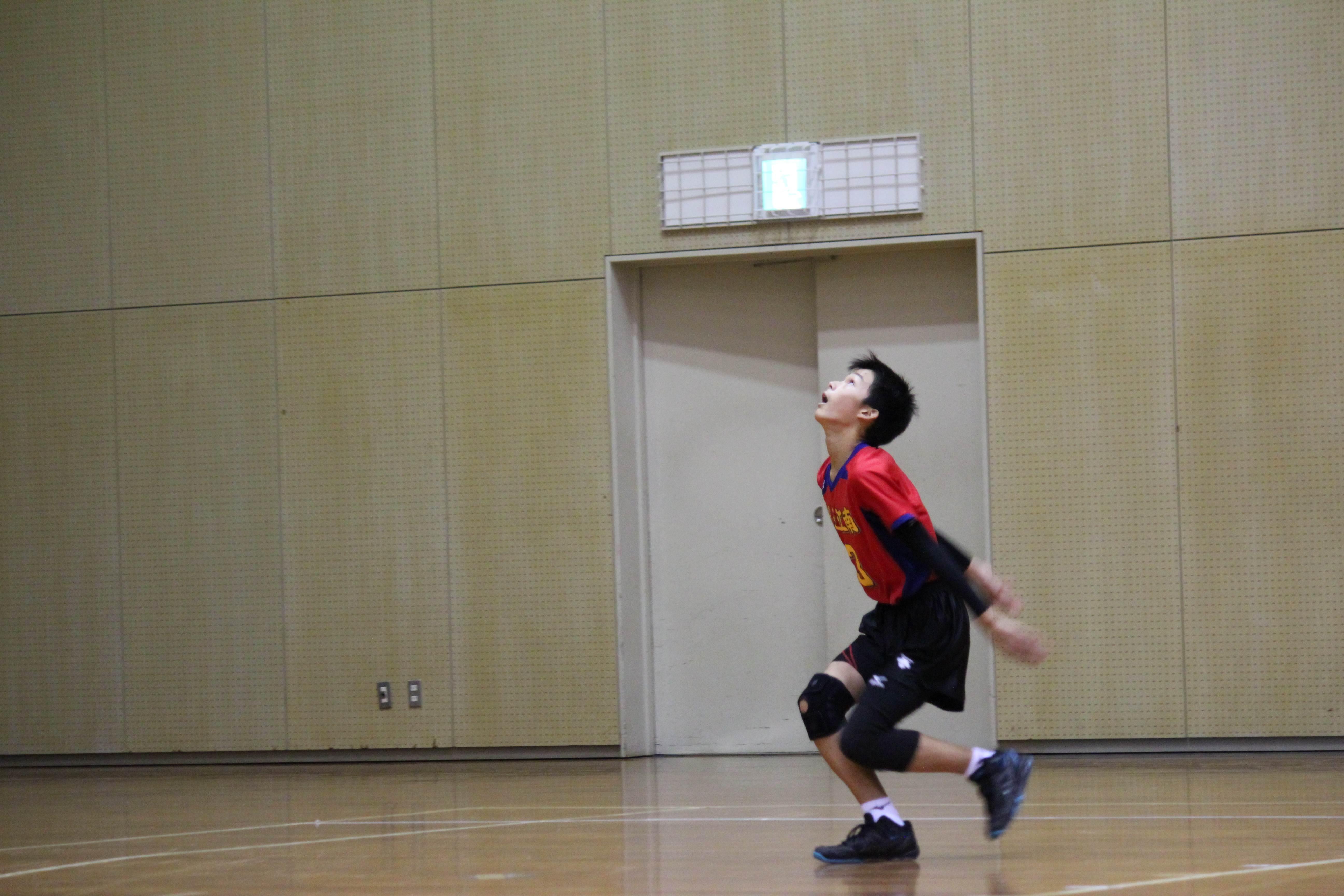 バレーボール (426)