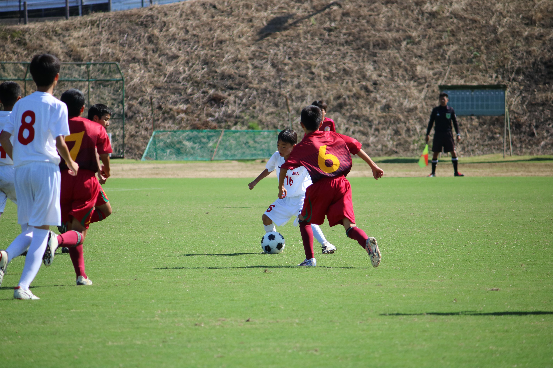 サッカー (593)