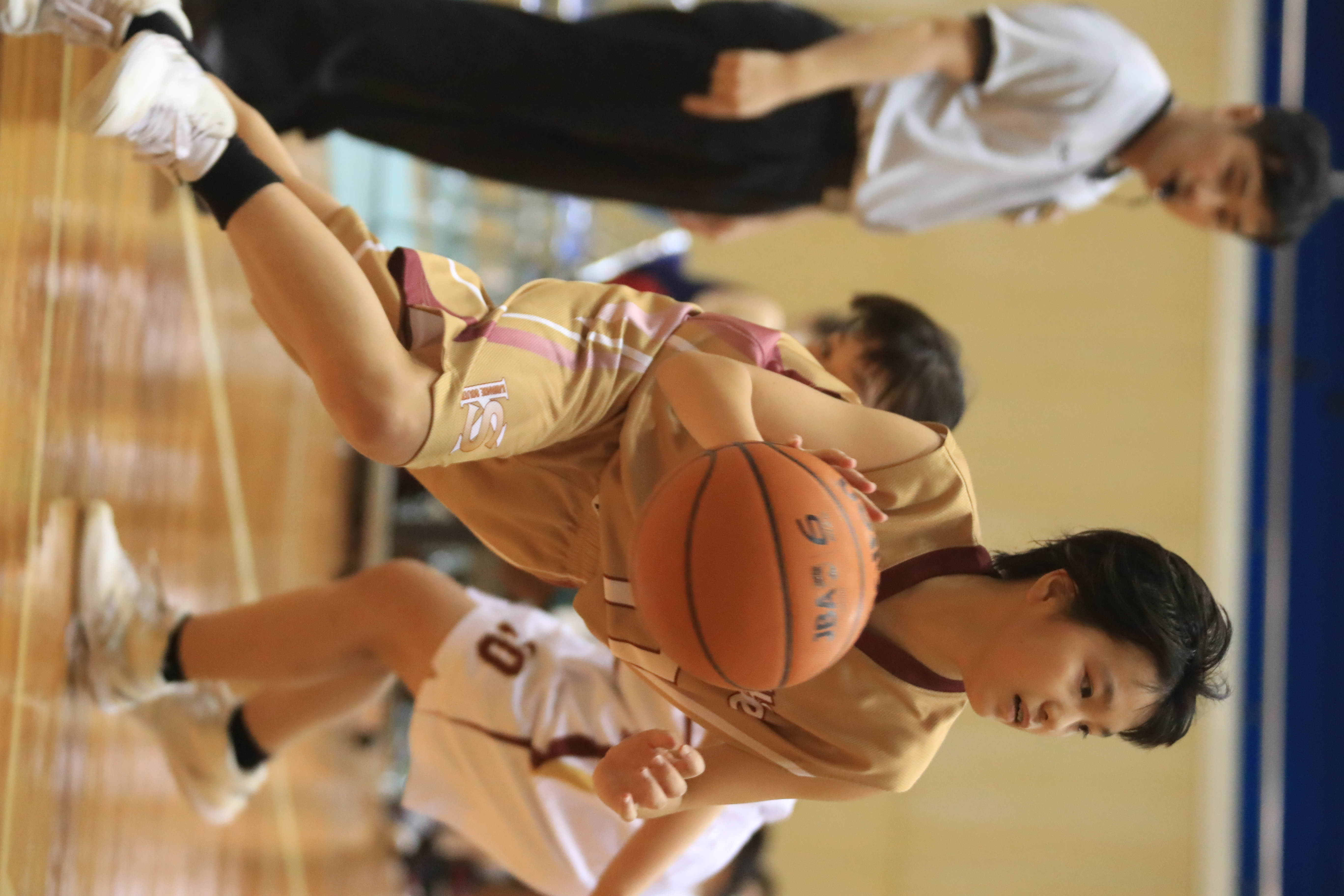 バスケット (367)
