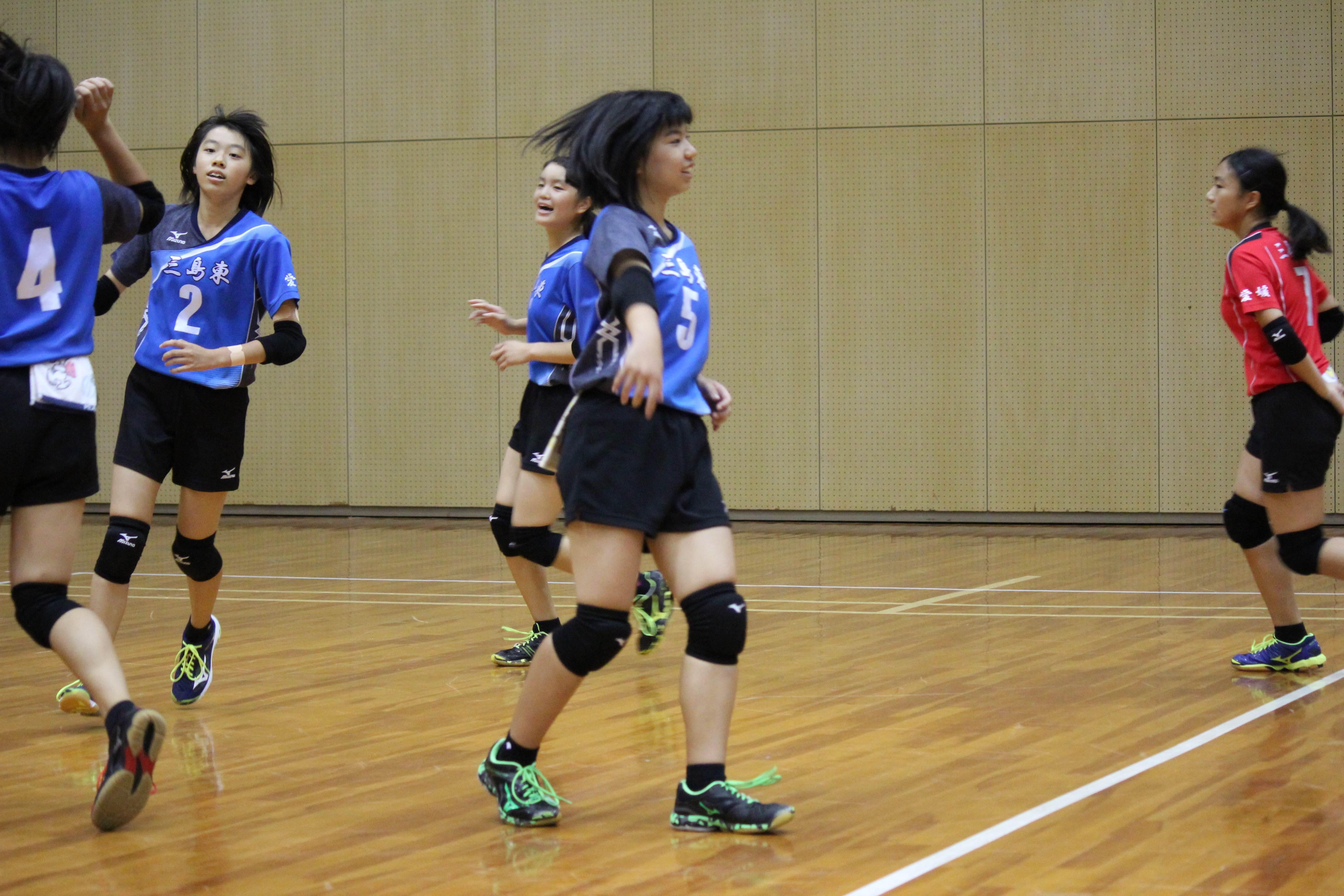バレーボール (455)