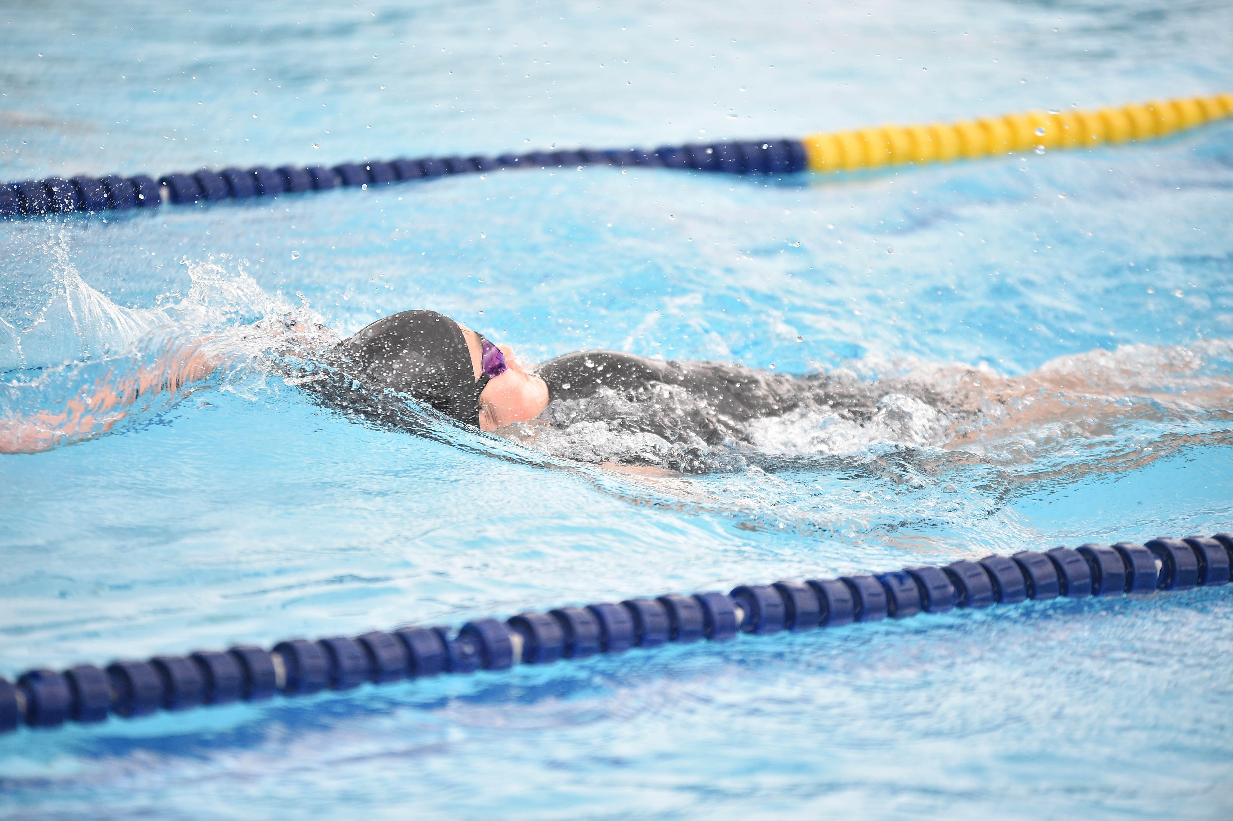 水泳 (110)