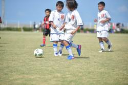 mini_soccer (354)