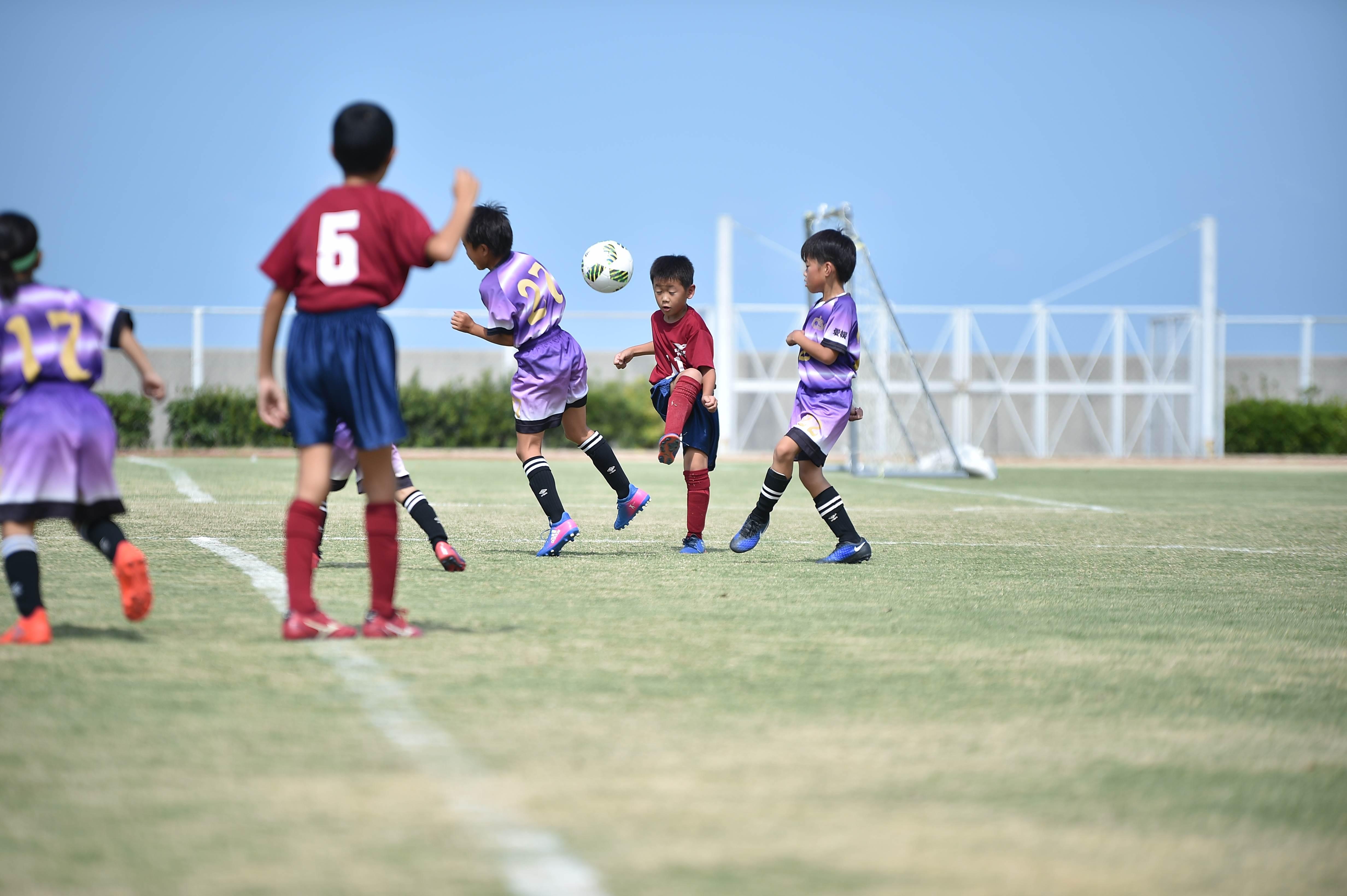 mini_soccer (280)