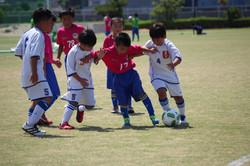 mini_soccer (128)