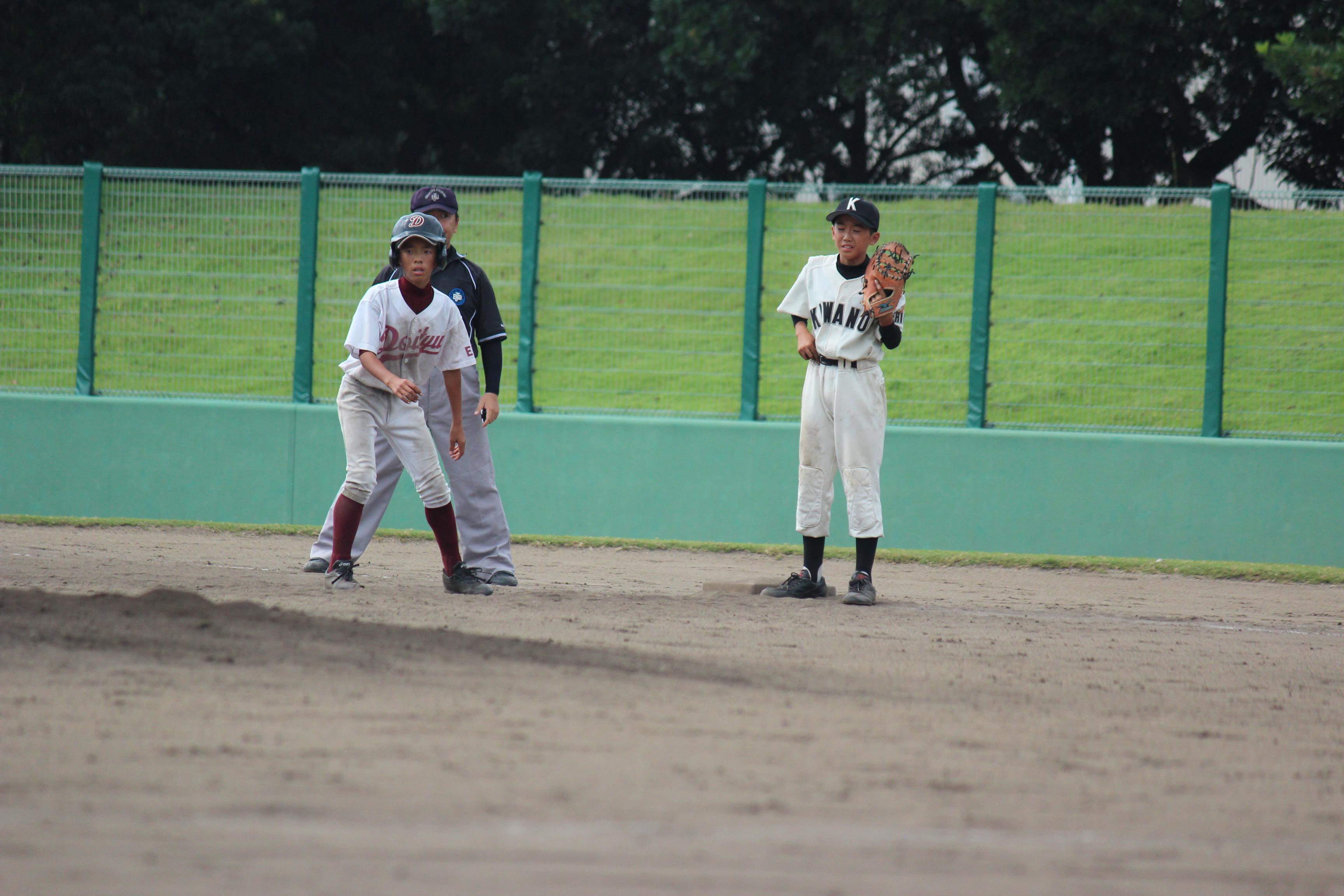 野球 (801)