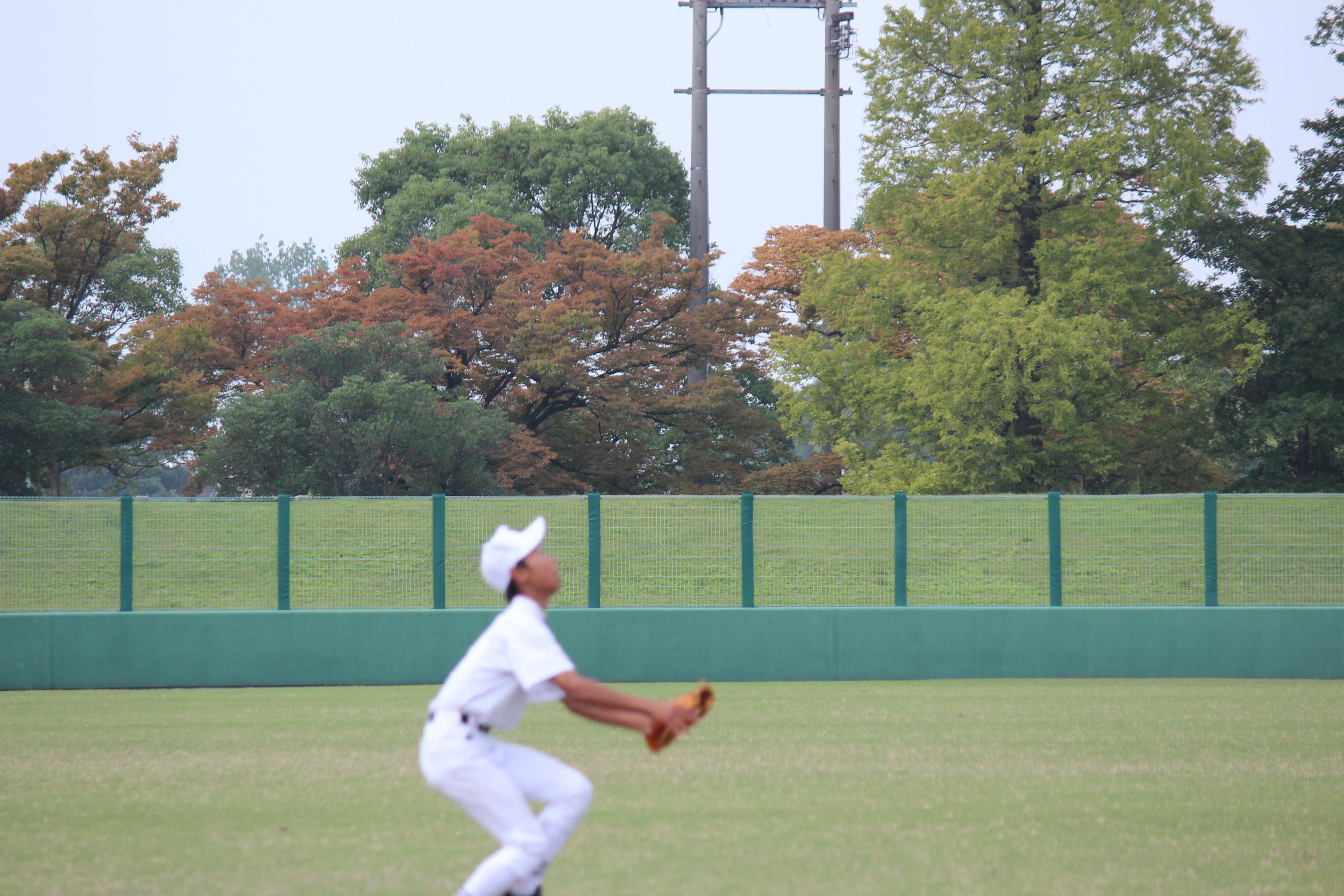 野球 (461)
