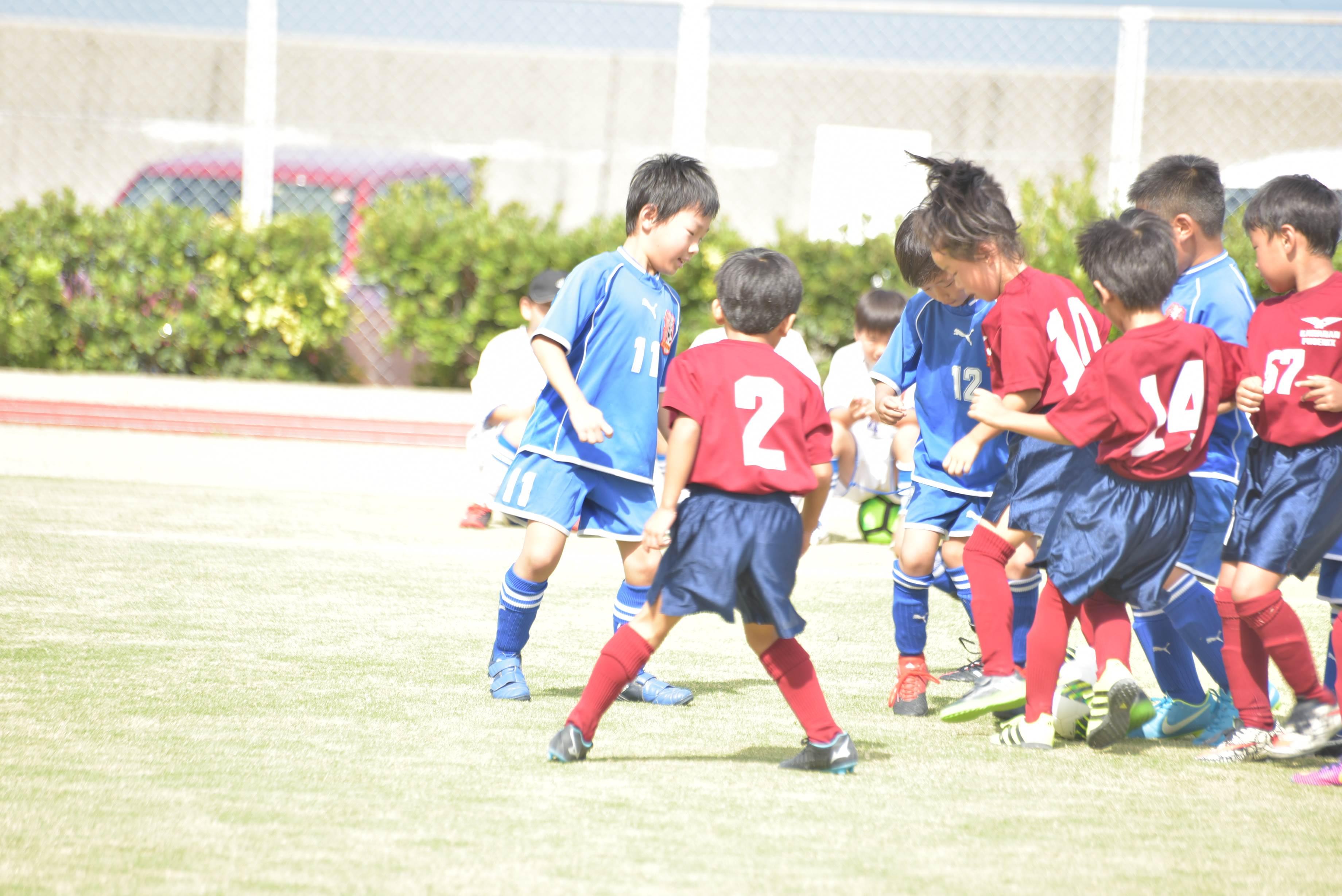 mini_soccer (542)