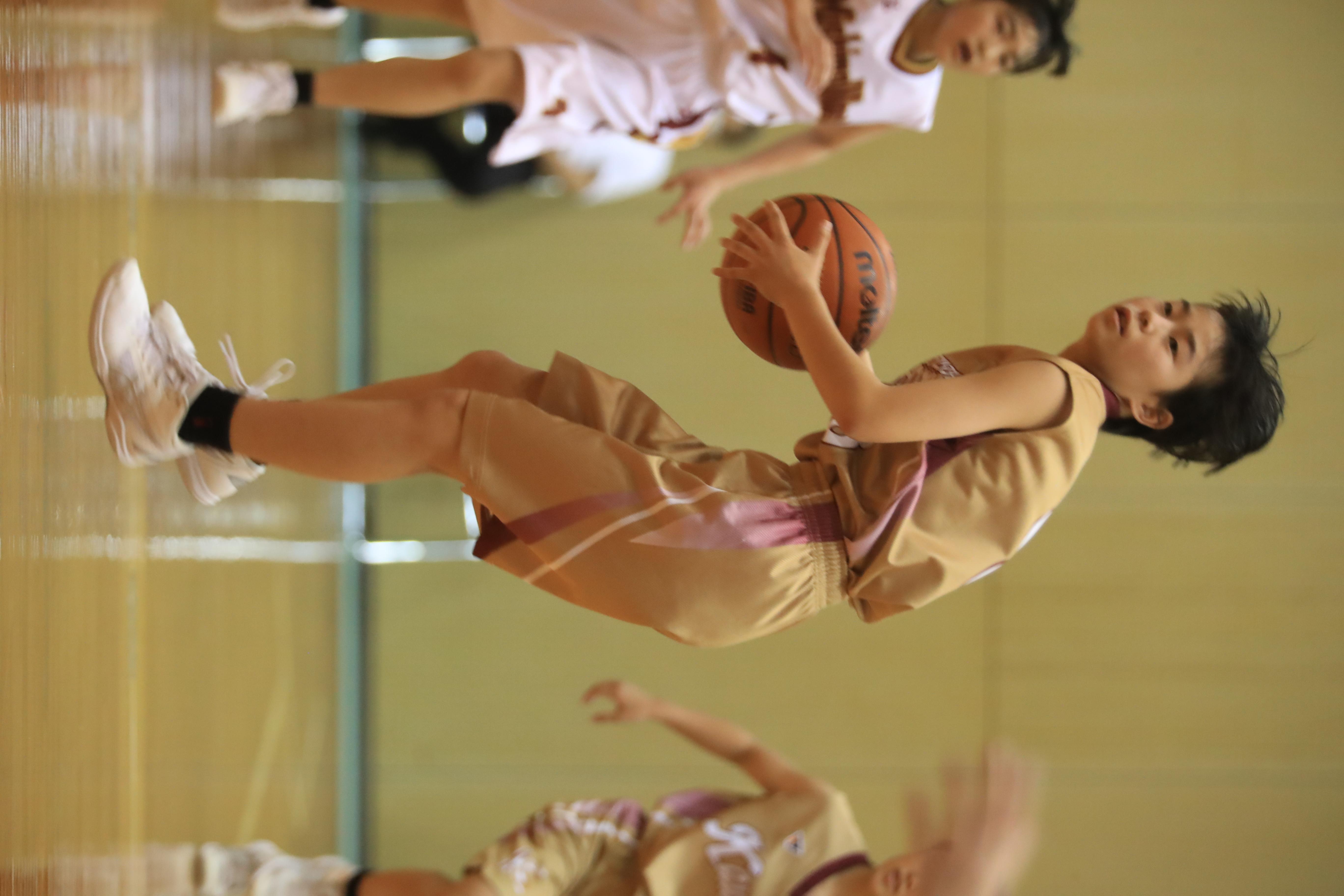 バスケット (438)
