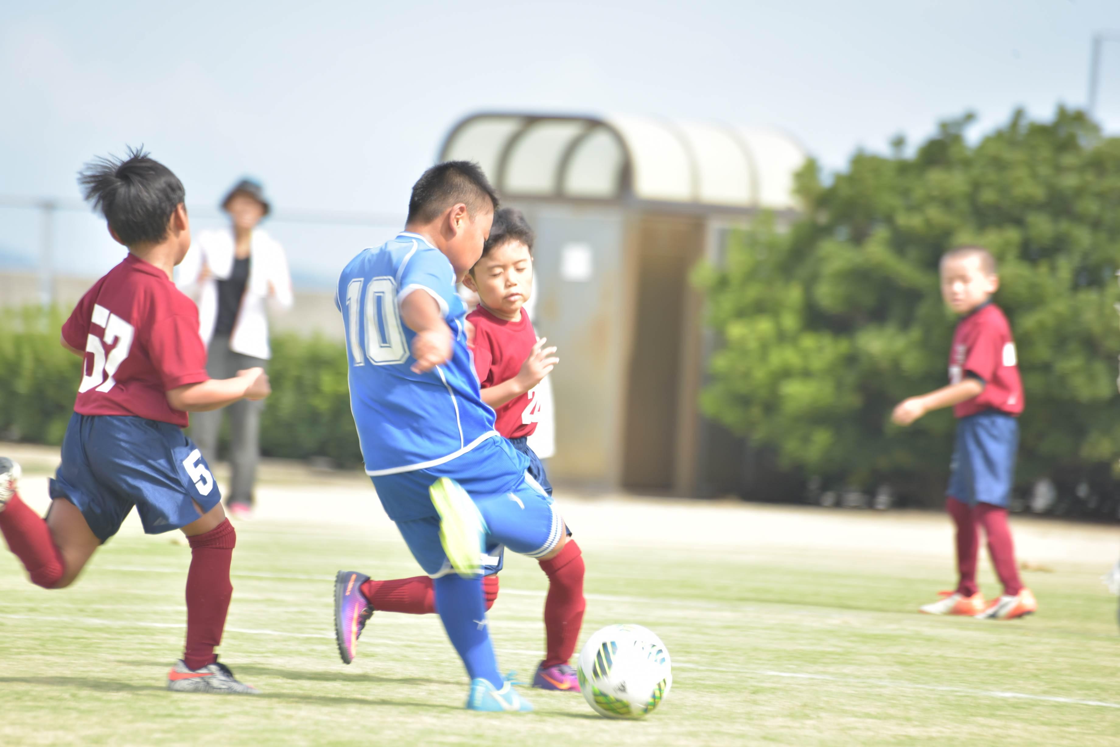 mini_soccer (551)